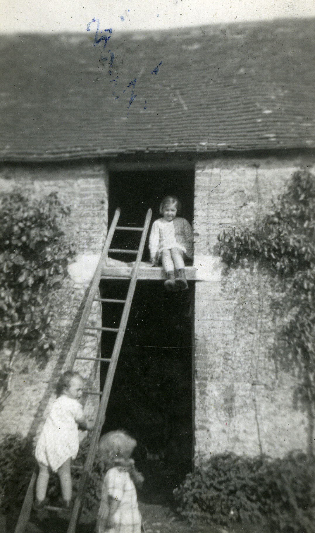 Three children, two of them Jewish children in hiding, play together by a ladder.  Pictured are Mireille (top) and her brother Maurice (on the ladder), with Jean, a non-Jewish child that the Boutte family also cared for.