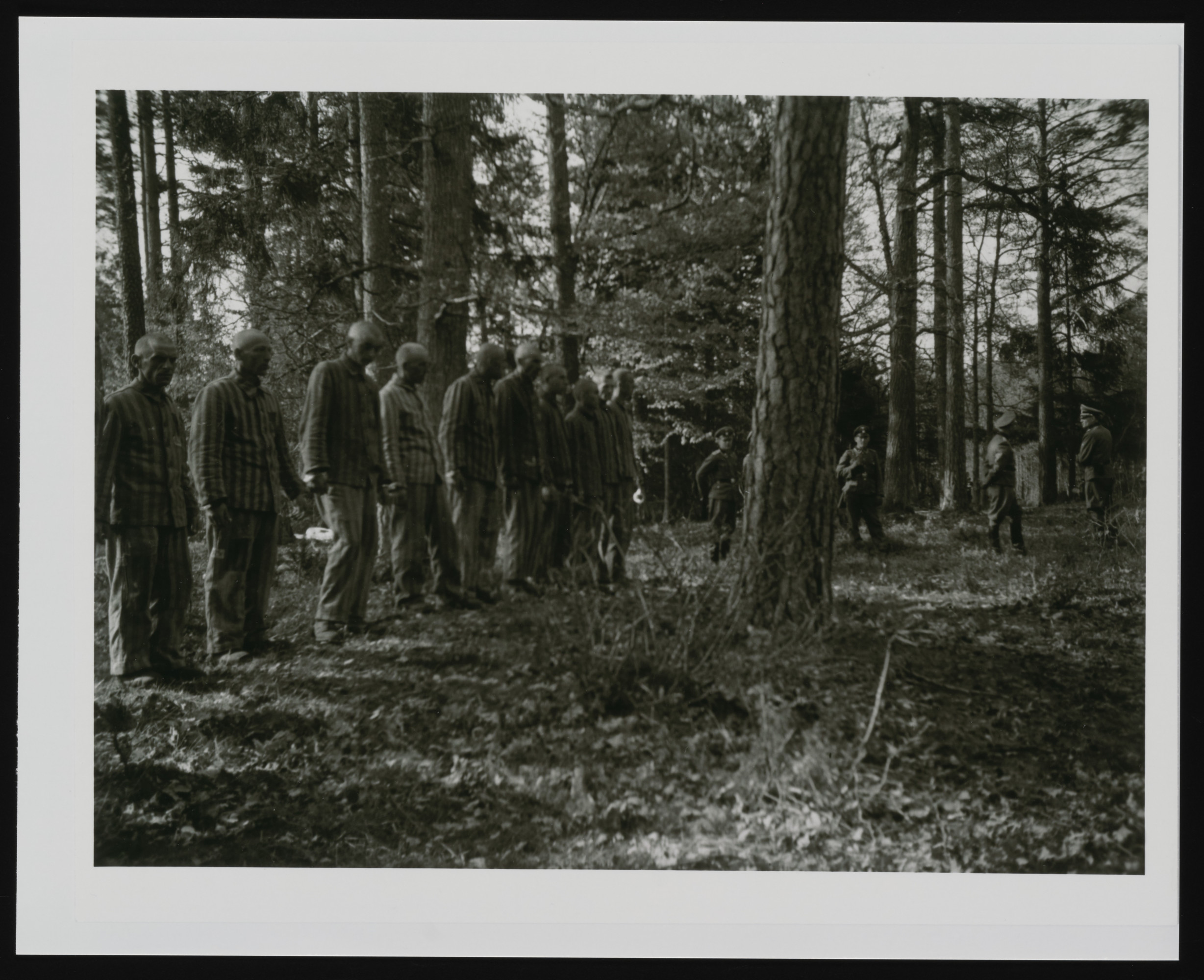 Prisoners from Buchenwald awaiting execution in the forest near the camp.