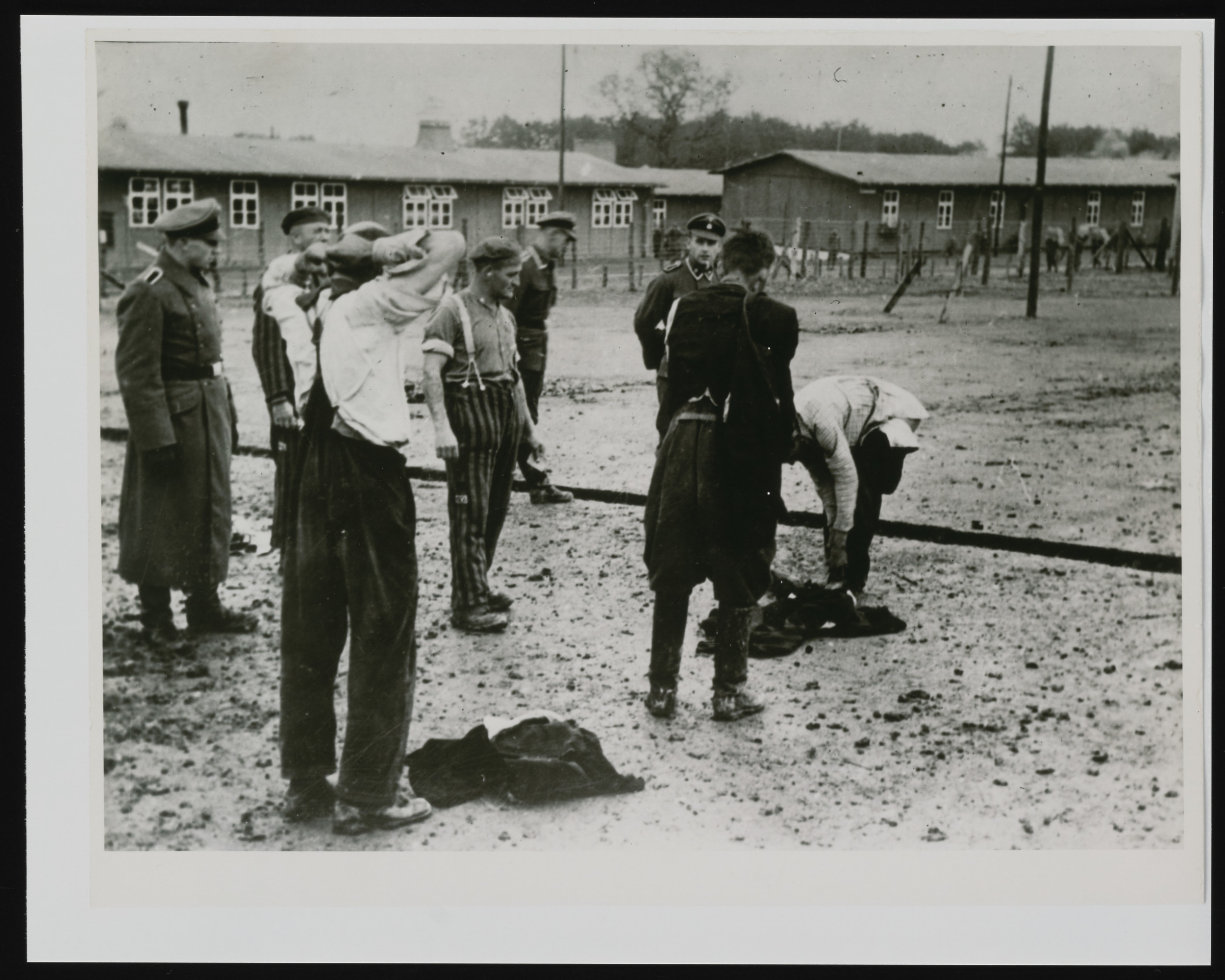 Newly arrived Polish prisoners undressing before they are washed and shaved.