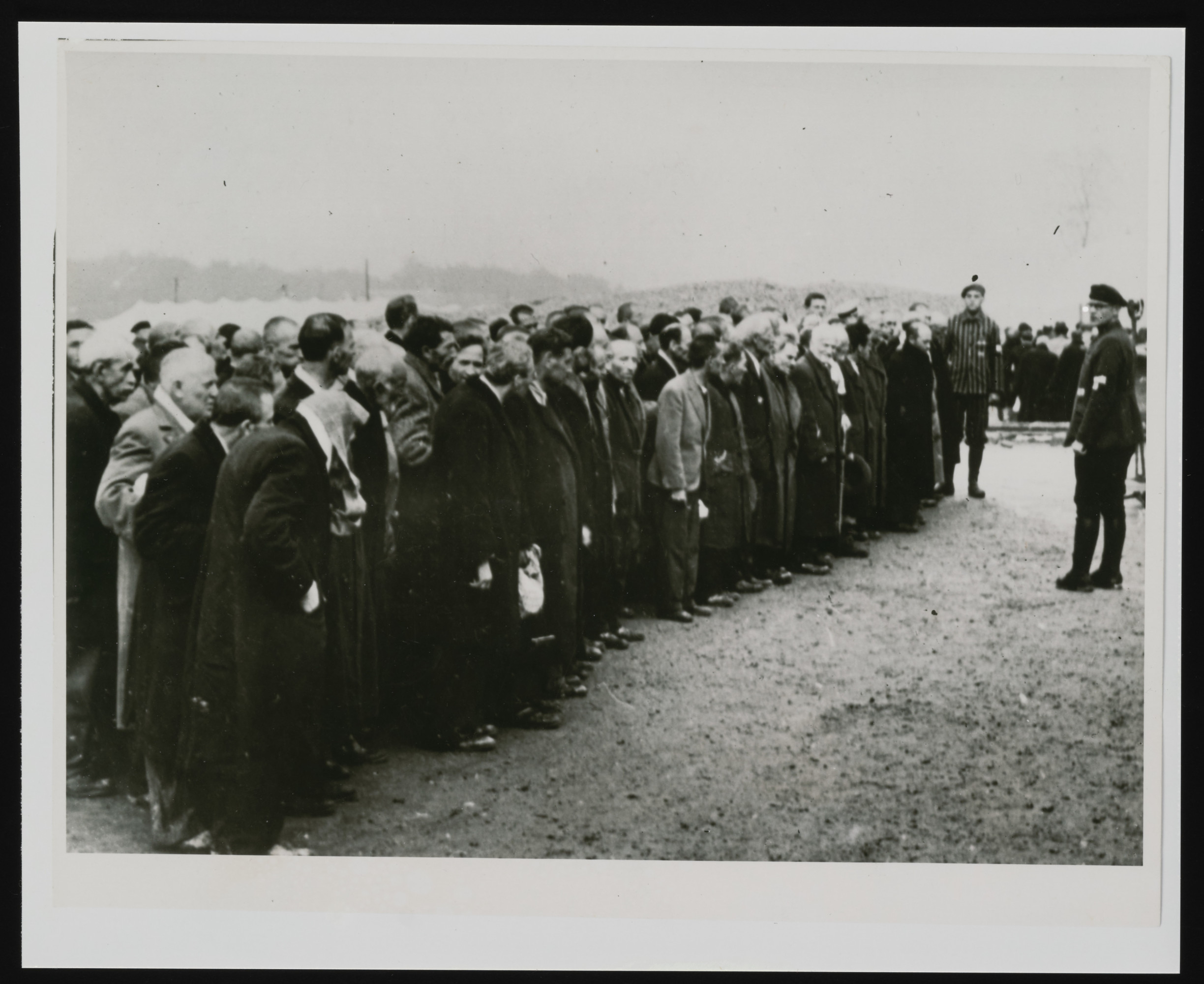 Newly arrived Polish prisoners lined up for registration in Buchenwald concentration camp.