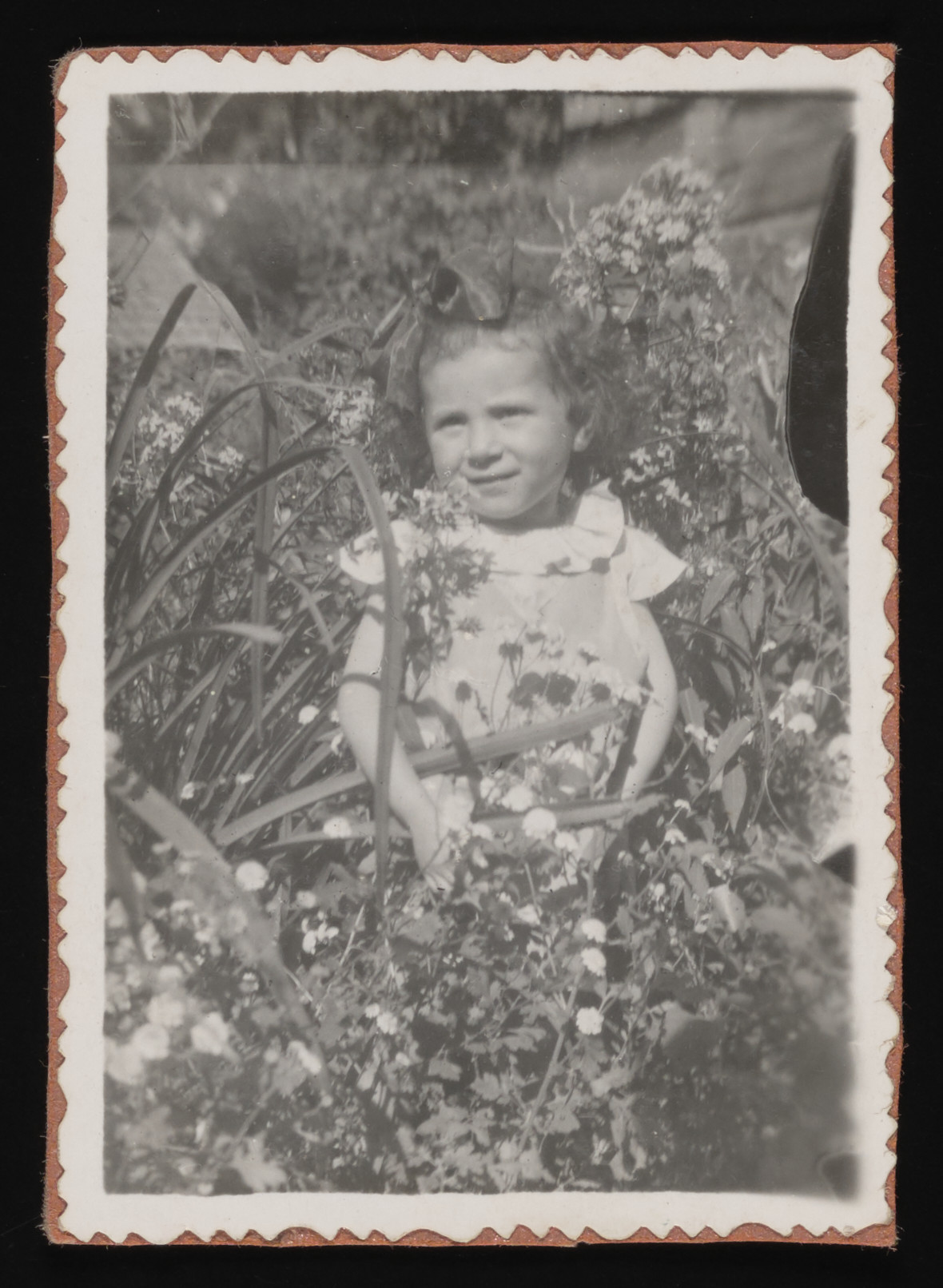 Close-up portrait of a young child, Marysia Rozenszajn, standing among high grass while in hiding.