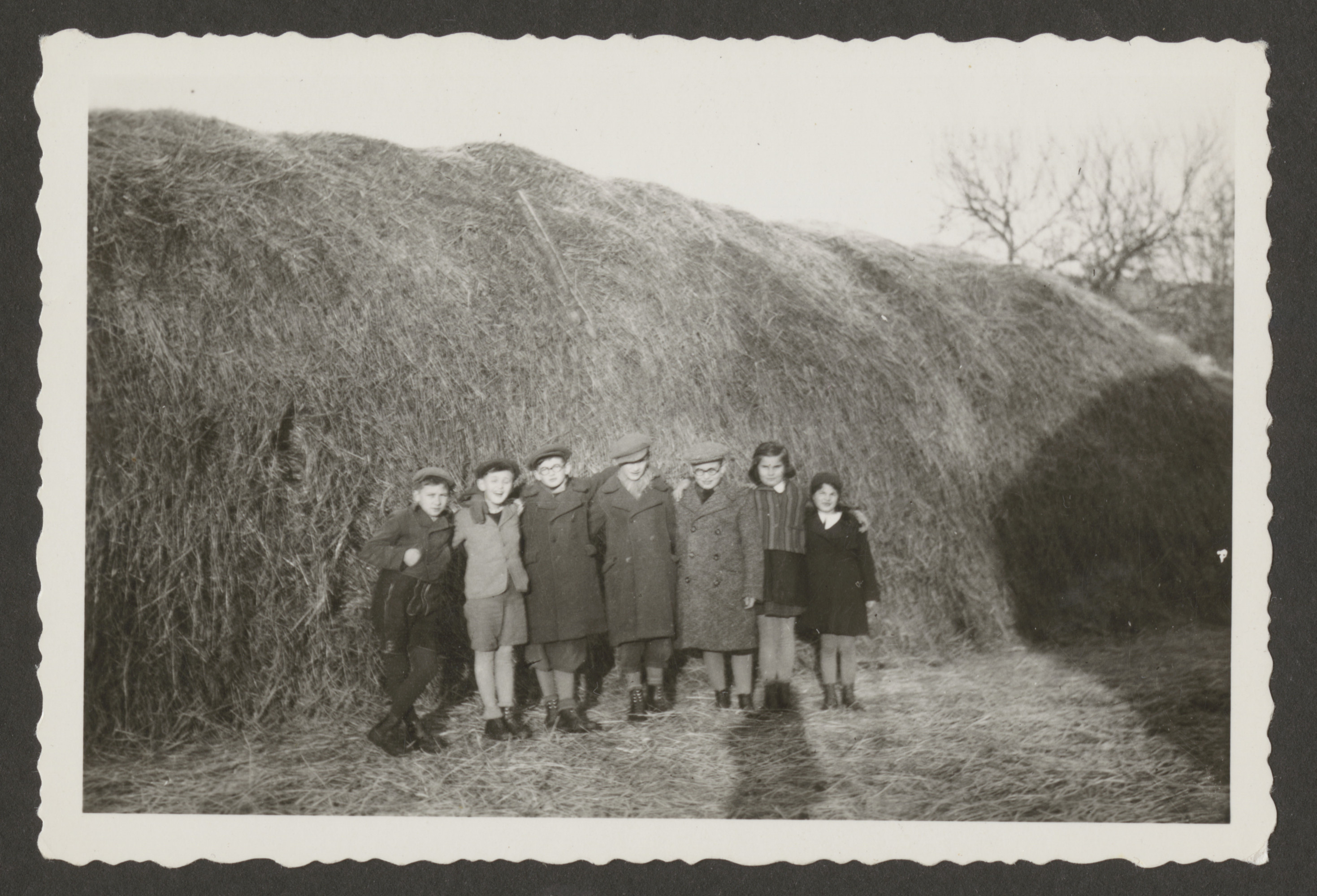 A group of young people poses next to a haystack.  Among those pictured are (left to right) Brandi Wetzler, Gabriel Groszman, [unknown], [unknown],  and Gabriel's cousins visting from Budapest:  Andi, Jutka and Agi Doman.