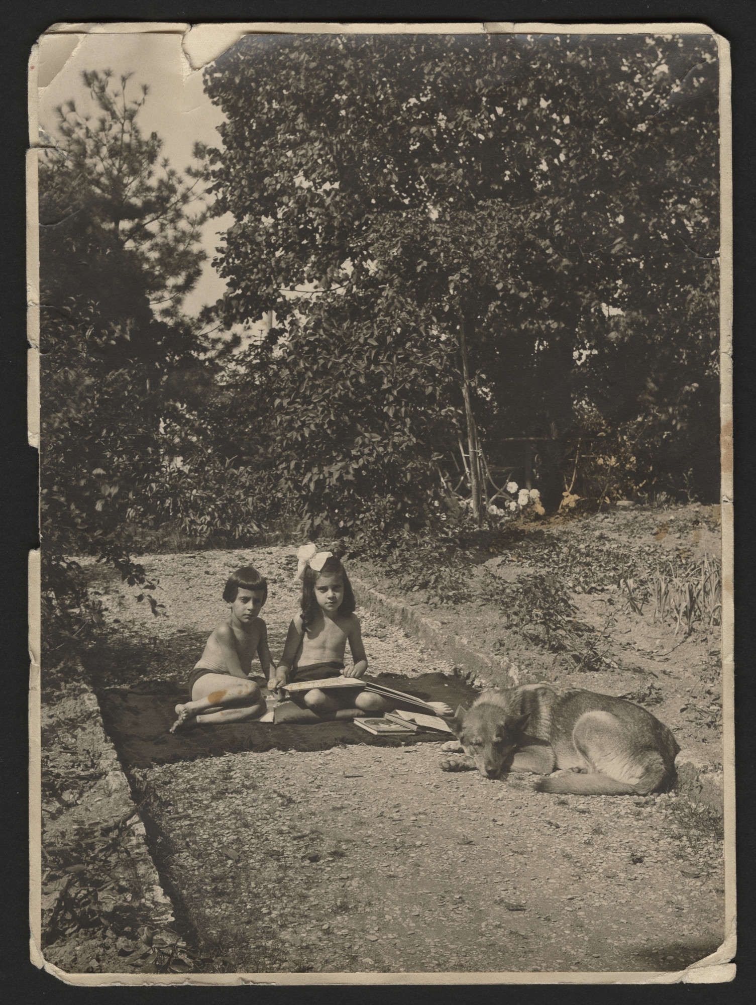 "Margot and Walter sit on a blanket in a garden, next to their dog.  The inscription on the back of the photograph (translated from German) reads, ""Margo and Werner [Walter] send heartfelt greetings to dear Uncle August. In the garden, Sept. 1919.)"
