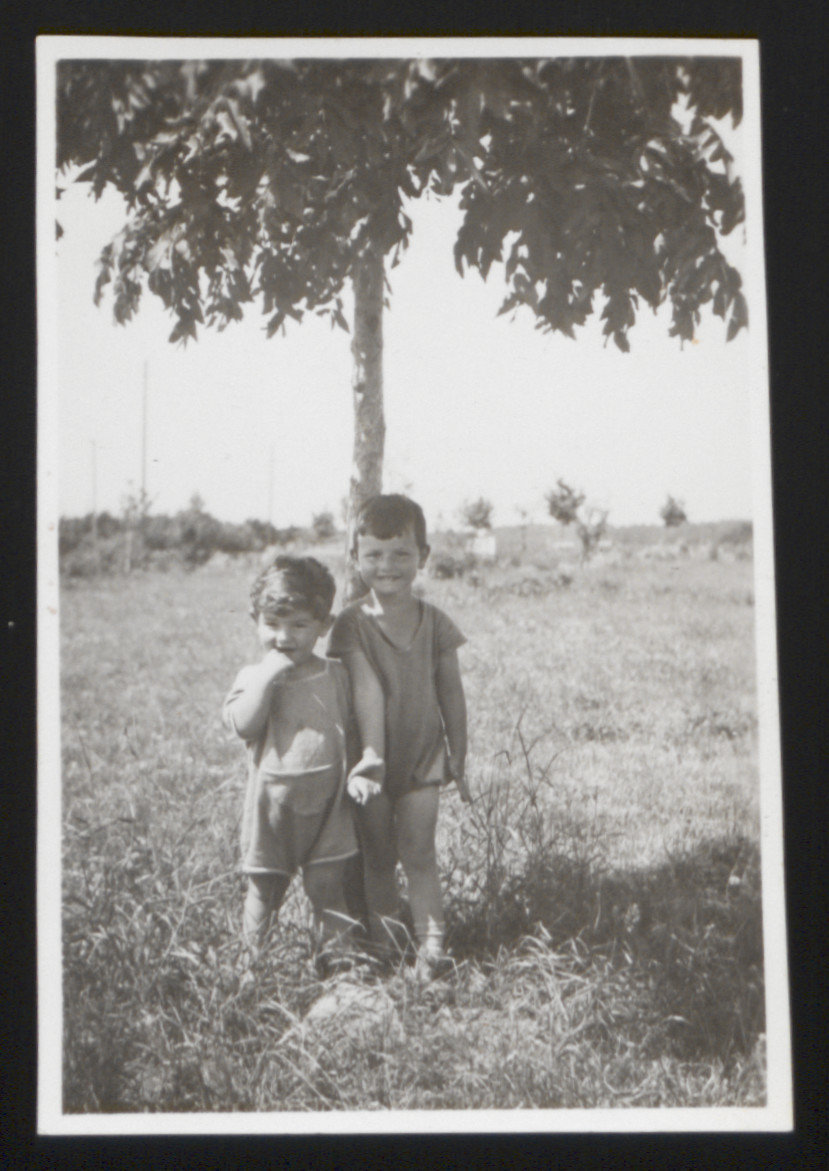 Brothers Karl Heinz (right) and Wolfgang Rosner pose for a photograph beneath a tree.