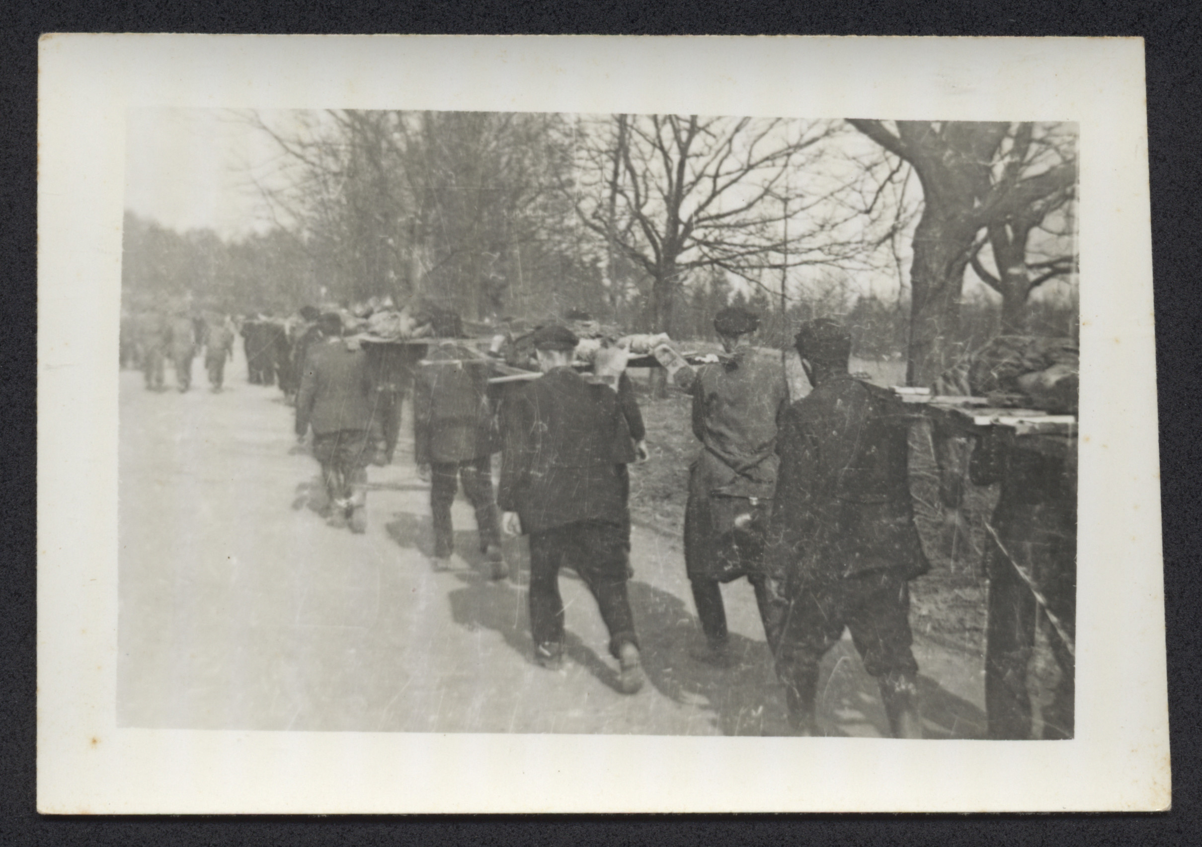 German civilians remove corpses from the Nordhausen concentration camp for burial in mass graves.