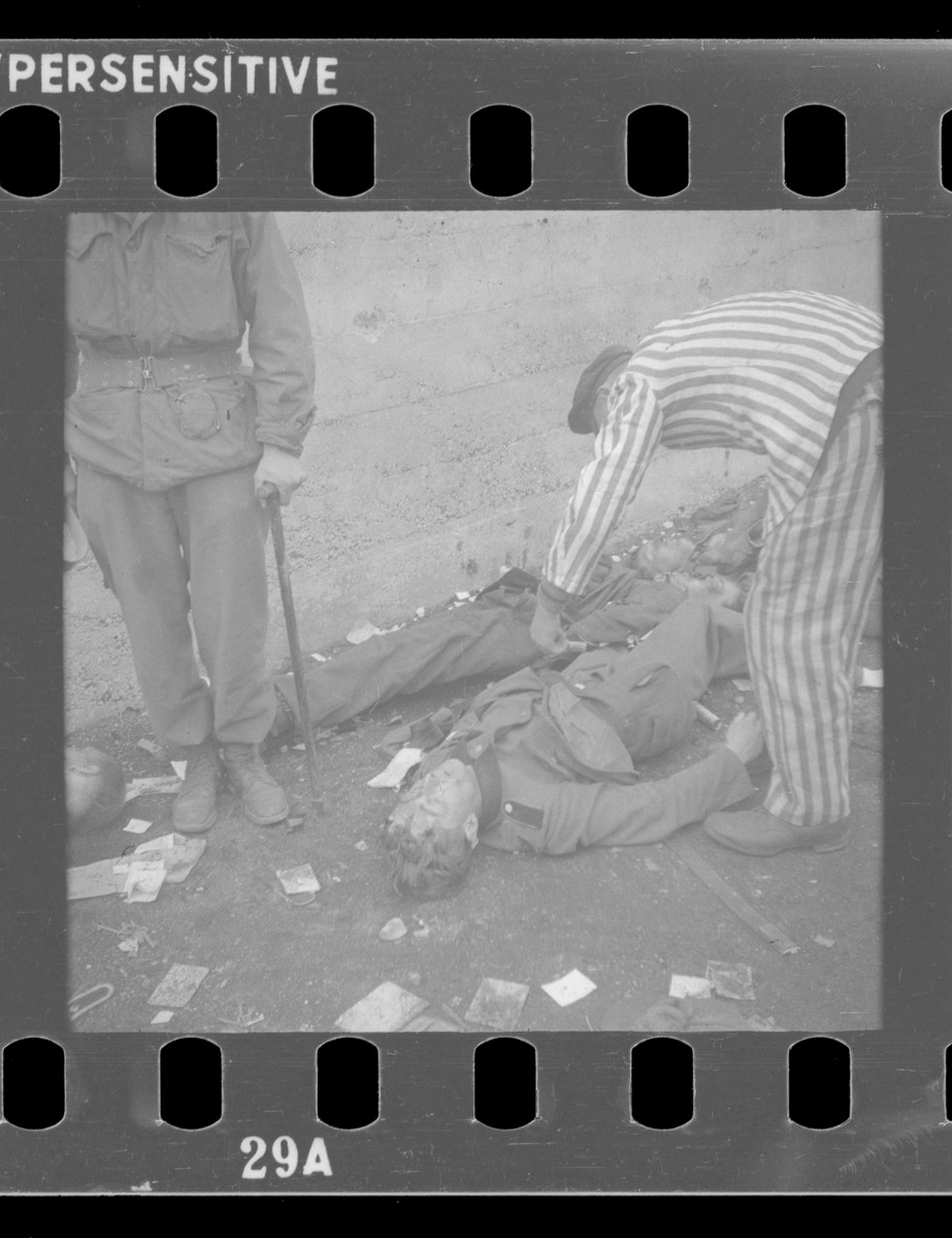 Recently liberated inmates of Dachau search the corpses of SS guards executed following the liberation of the camp.  This image is one of several from the collection of Dr. Richard Halfast, chief medical officer of general surgery, who served with the 7th General Hospital and 1st Auxilliary Surgical Group.  Halfast's unit was among the first to enter the Dachau after liberation by American forces.