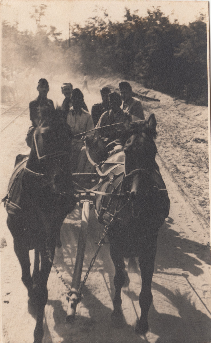 Members of a Hungarian labor battalion ride in a horse drawn cart.