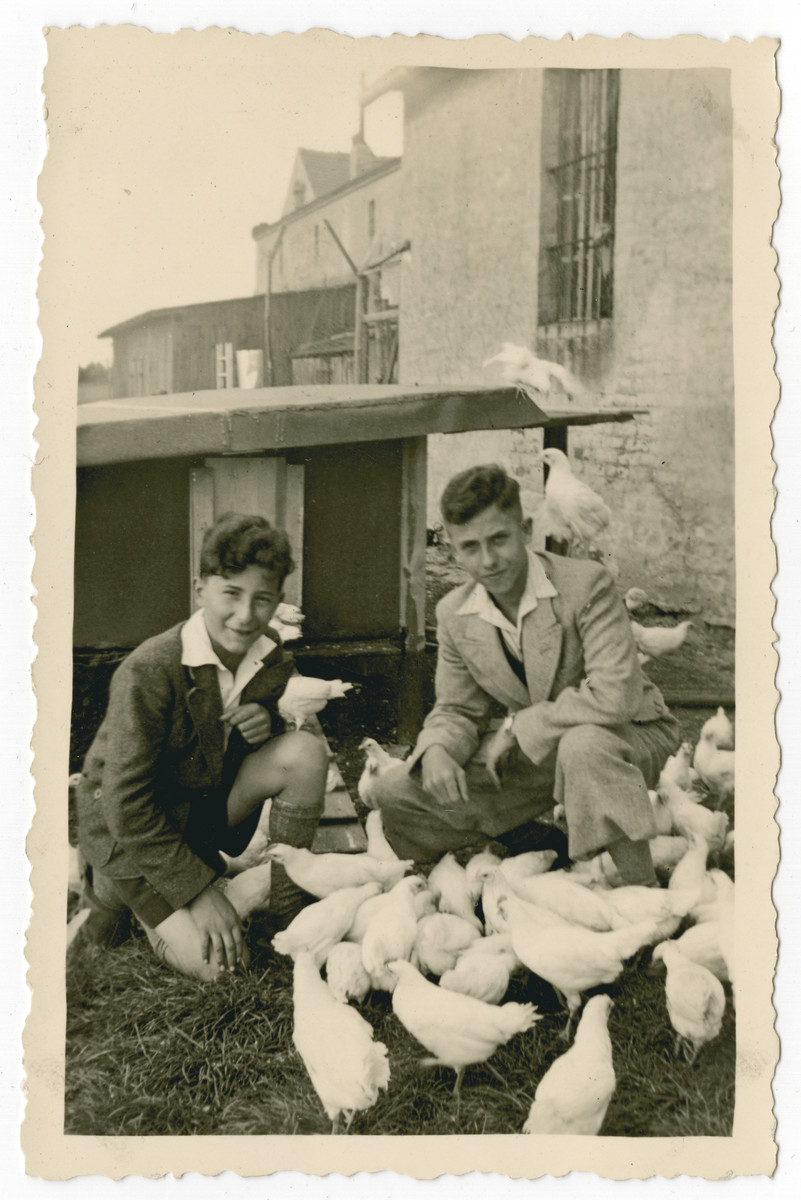 Heinz Schleyer (right, cousin of the donor) and Walter Eisner care for chickens in the Schnibienchen training farm to prepare for their immigration to Palestine.