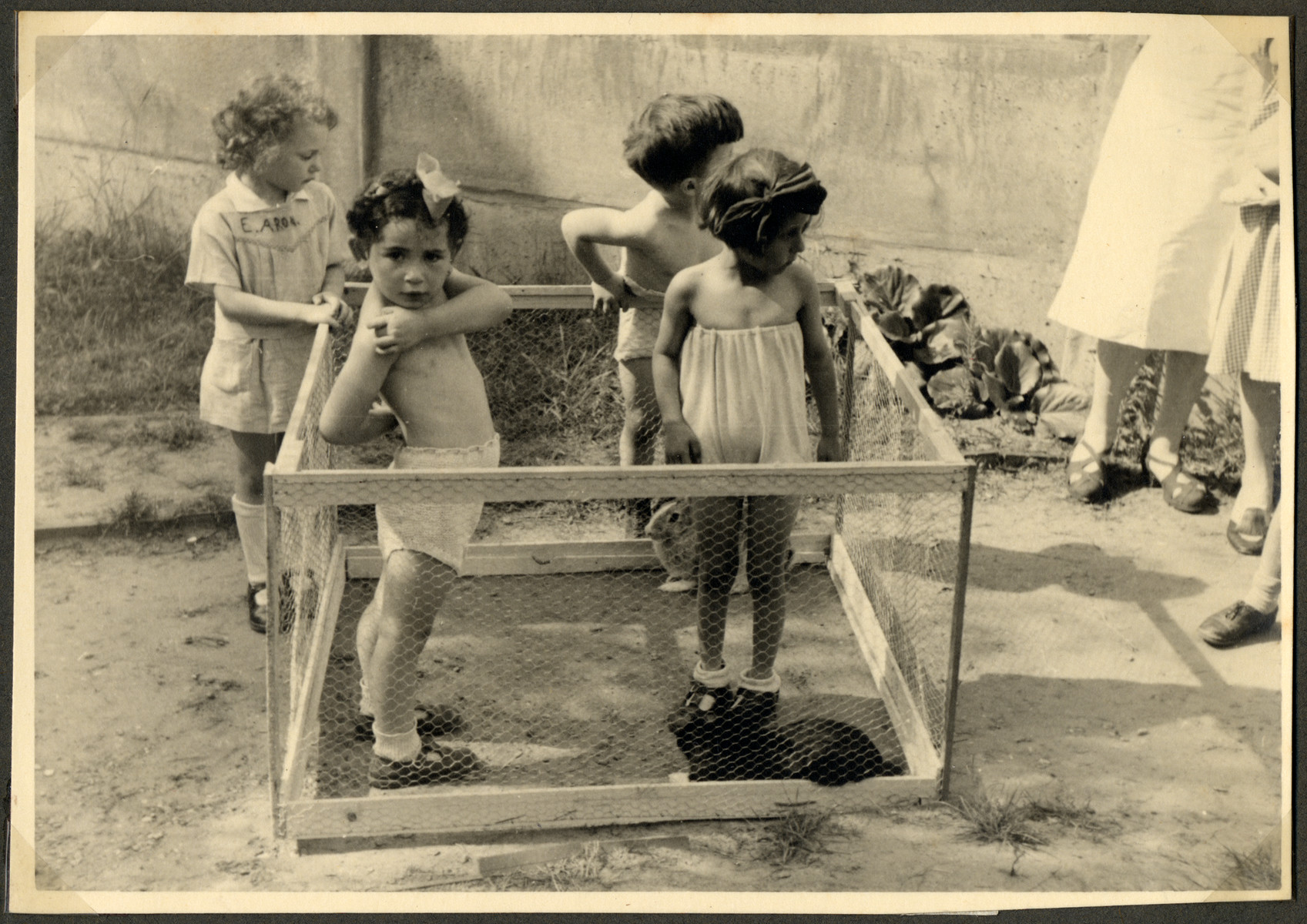 Children in the Nos Petits Jewish kindergarten stand outside in a playpen in the yard.