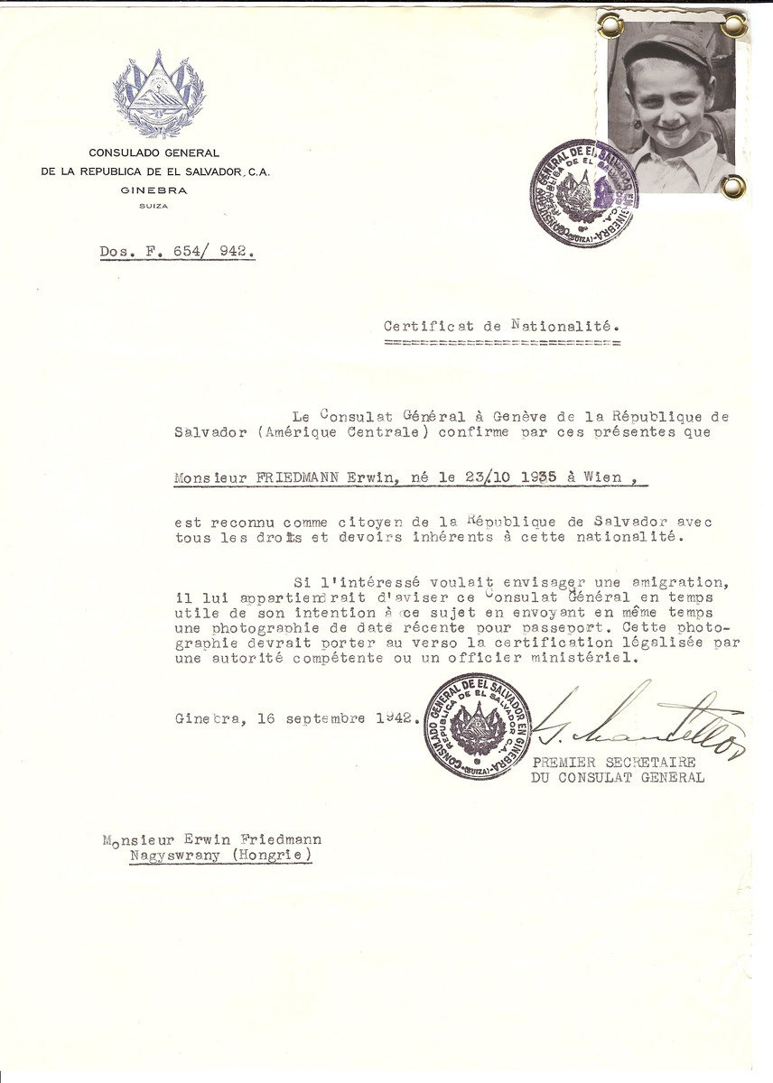 Unauthorized Salvadoran citizenship certificate made out to Erwin Friedmann (b. October 23, 1935 in Vienna) by George Mandel-Mantello, First Secretary of the Salvadoran Consulate in Geneva and sent to him in Nagyswrany.
