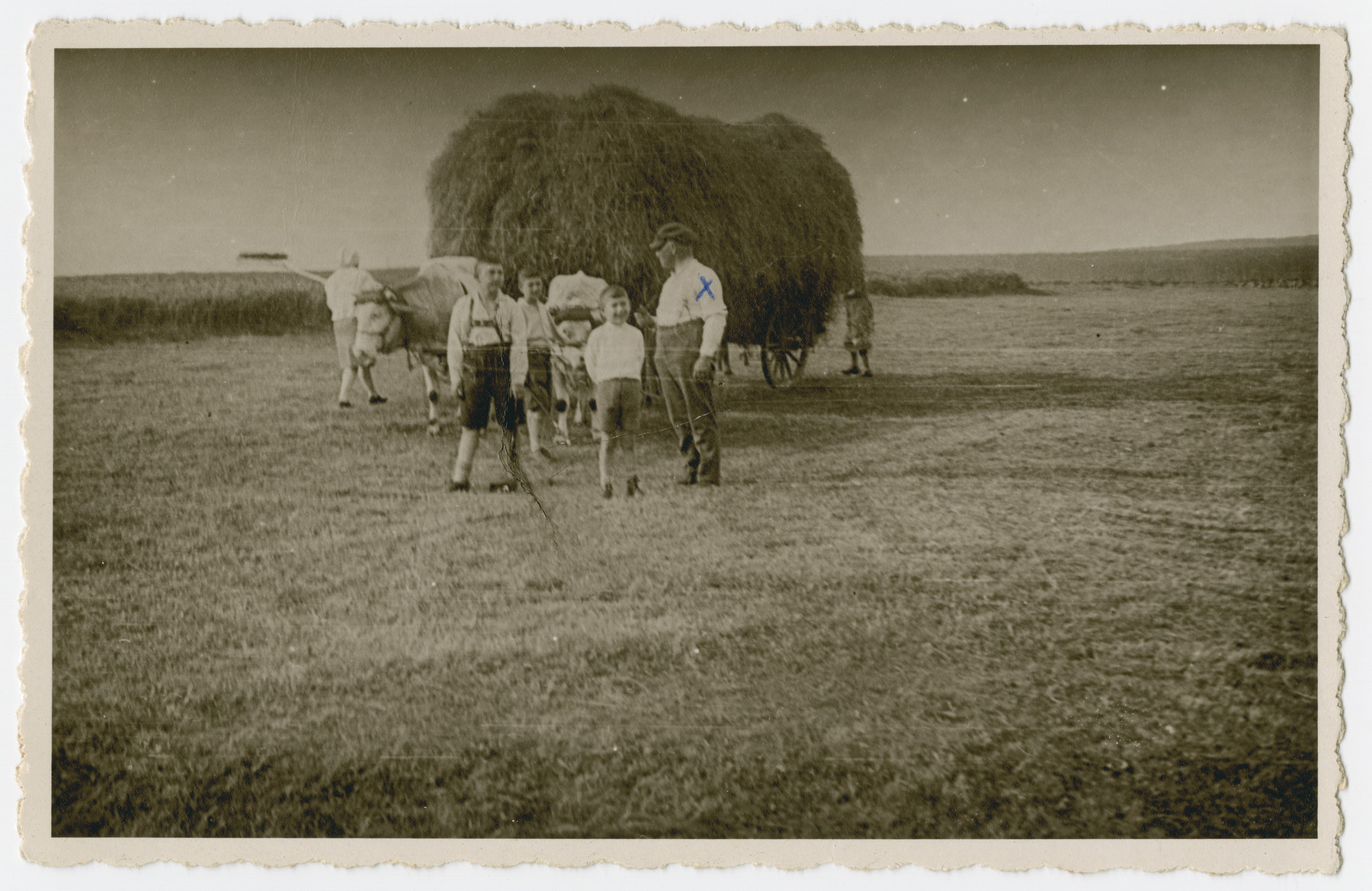From left to right, Artur, Helmut, Norbert, and Sigmund Isenberg pose for a photograph during hay harvesting.