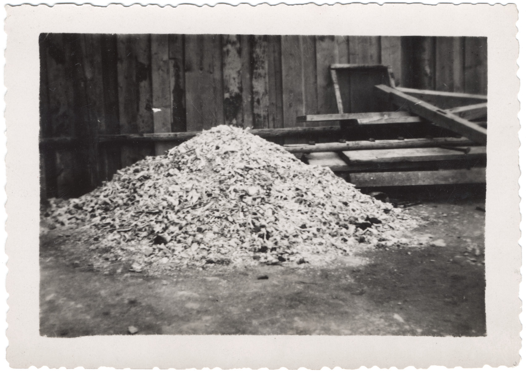 """View of a pile of ashes of human remains outside the crematory of Buchenwald.  The original caption reads: """"Buchenwald camp.  Pile of human ashes from crematory --  about 1200 persons ashes."""""""
