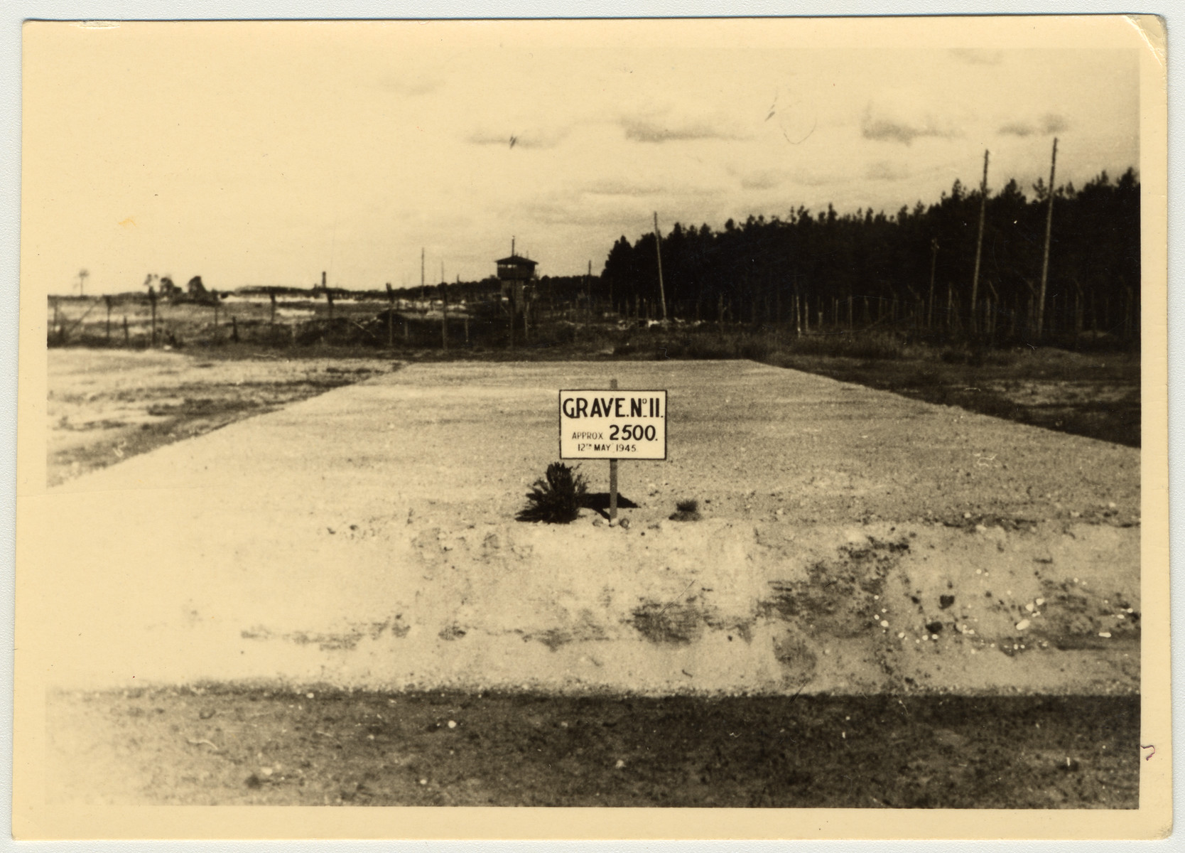 View of a mass grave pictured after the liberation of Bergen-Belsen.