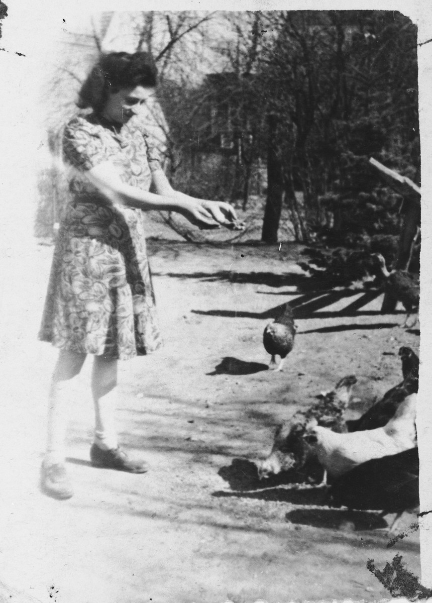 Susanne Taube feeds some chickens near the hospital that her husband administered.