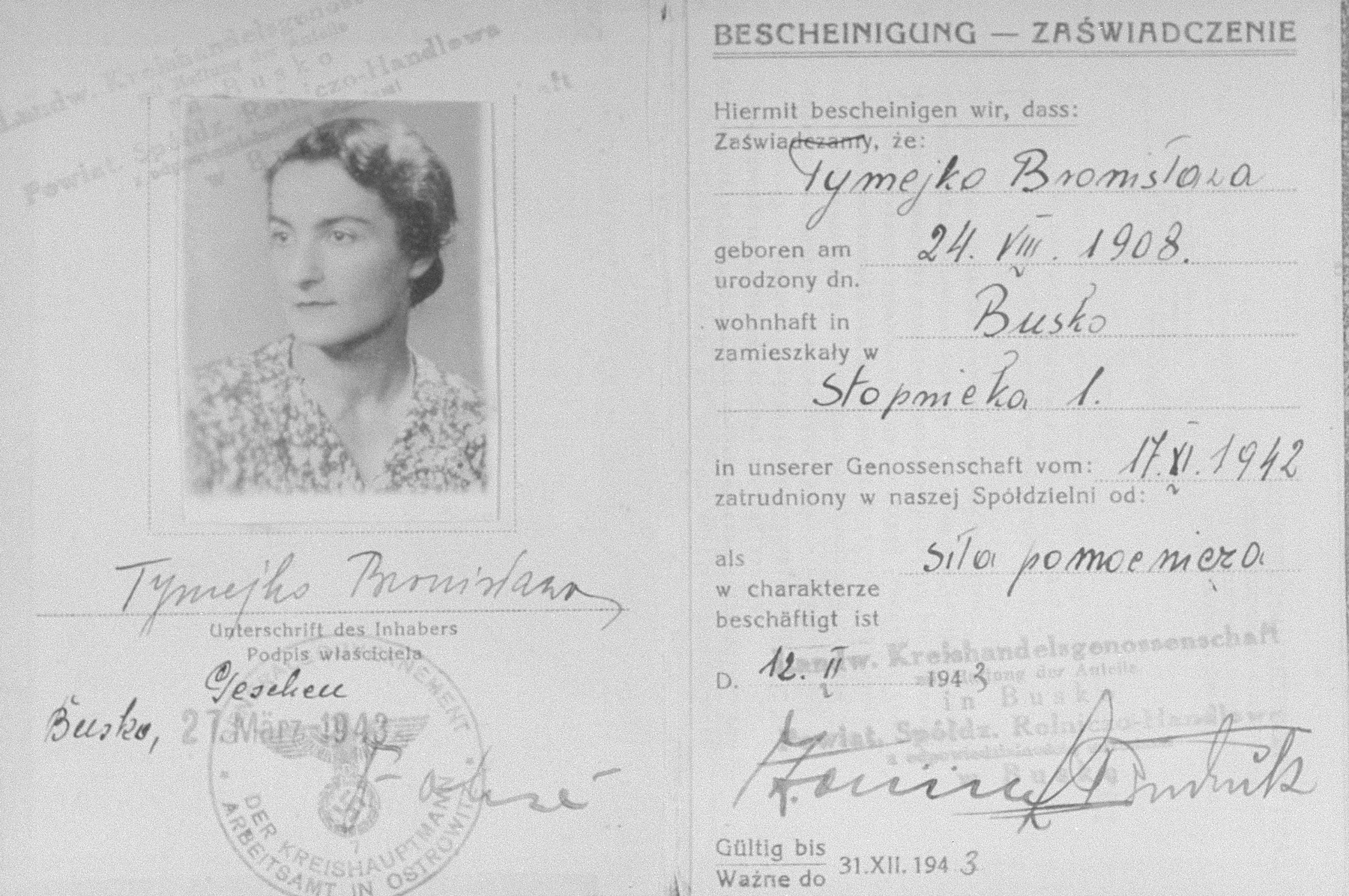 Document issued by the Regional Agricultural Mercantile Cooperative in Busko-Zdroj certifying that Bronislawa Tymejko (the Polish alias of the Jewish woman Laura Schwarzwald) is employed by the cooperative.