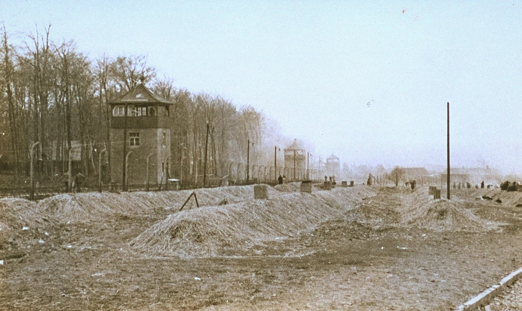 Colored view of a Buchenwald after liberation.