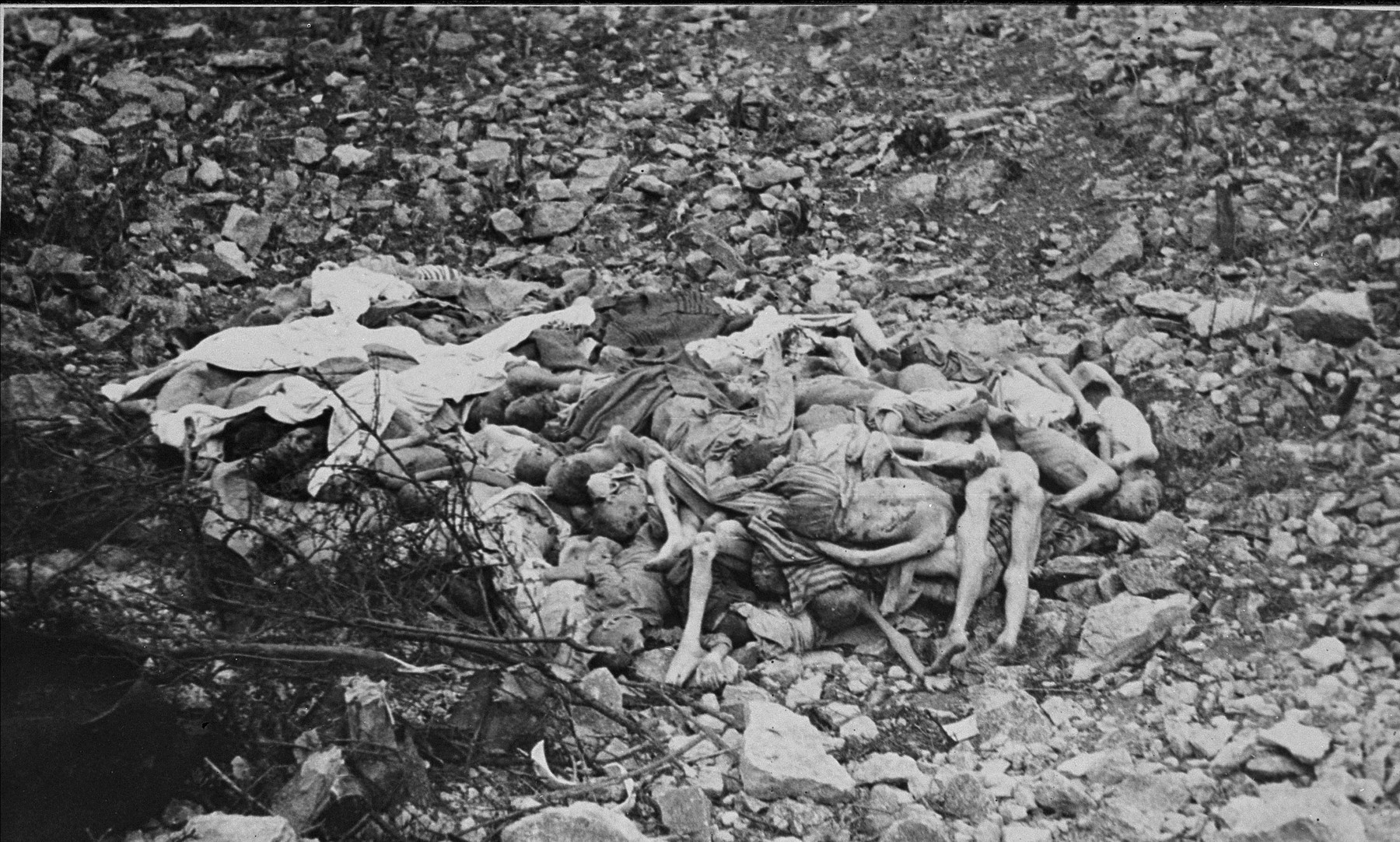 Corpses found at the bottom of a large depression in Buchenwald.