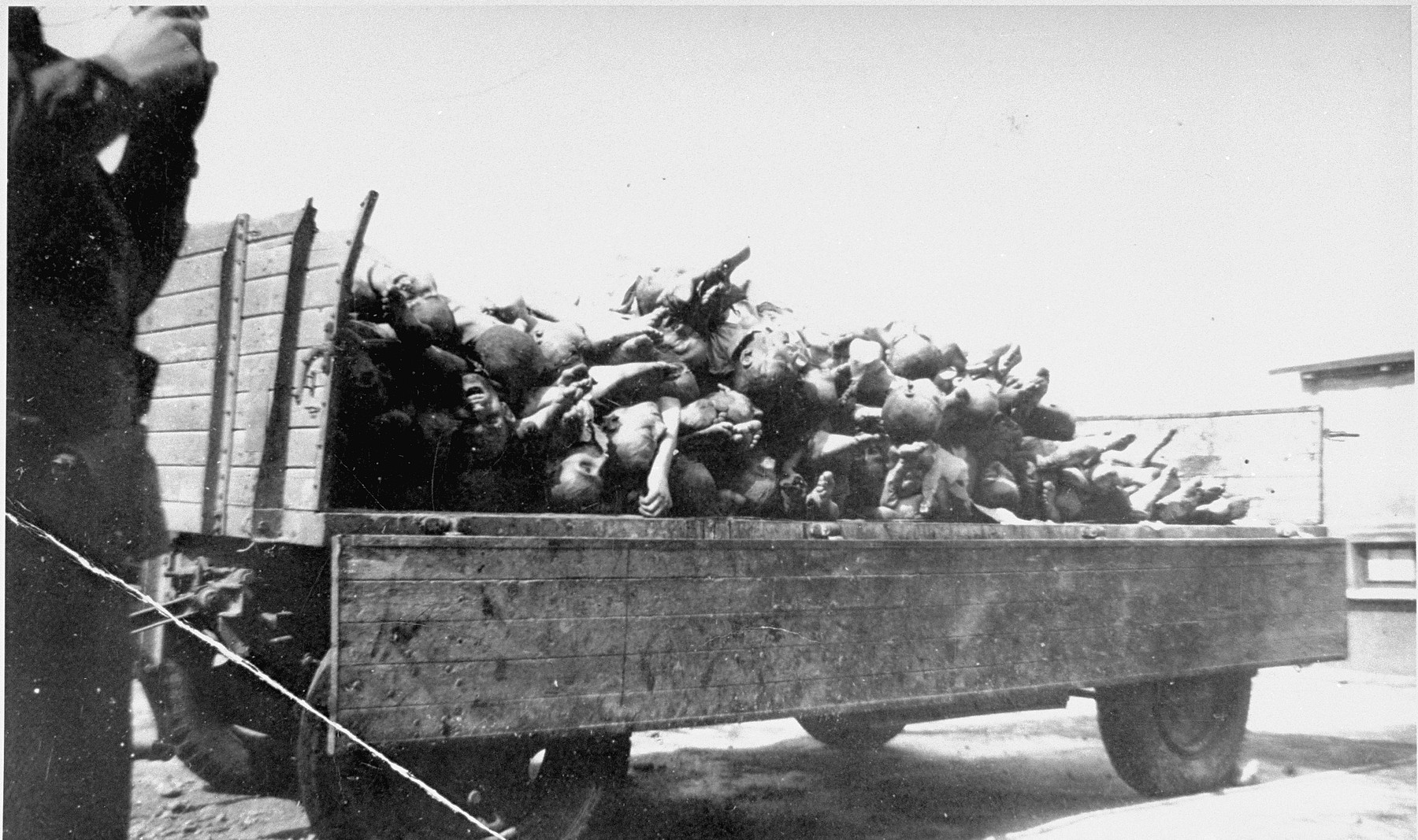 A wagon in Buchenwald loaded with corpses intended for burial.