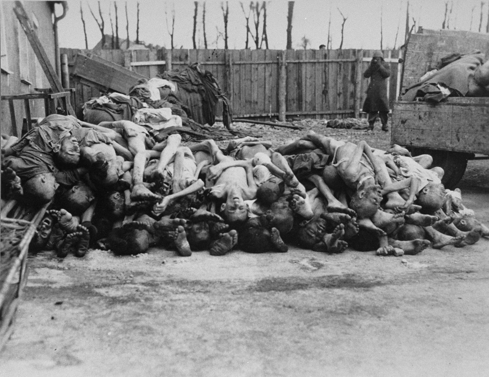 An American soldier photographs a pile of corpses in the newly liberated Buchenwald concentration camp.