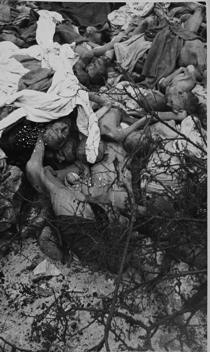 The corpses of prisoners found at the bottom of a large depression in Buchenwald.