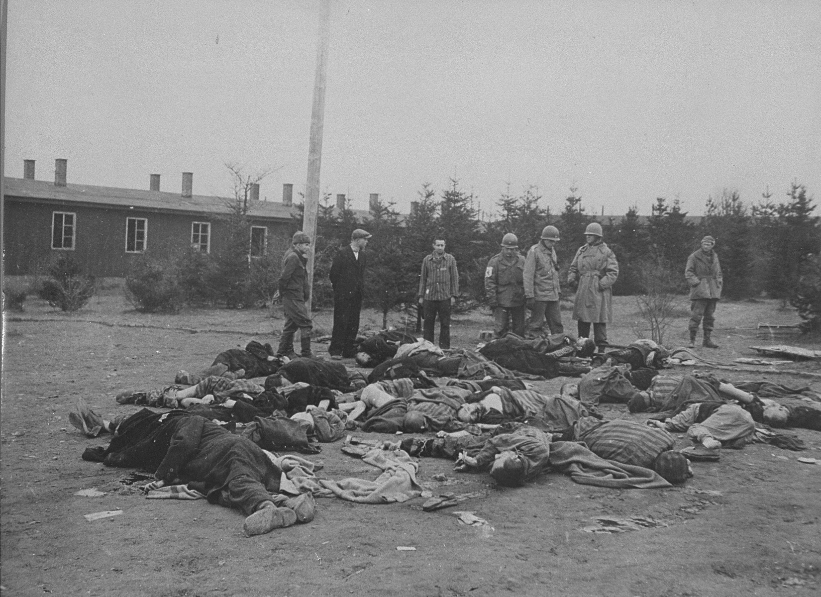 American soldiers and Ohrdruf survivors view the bodies of prisoners who were shot by the SS prior to the evacuation of the camp.