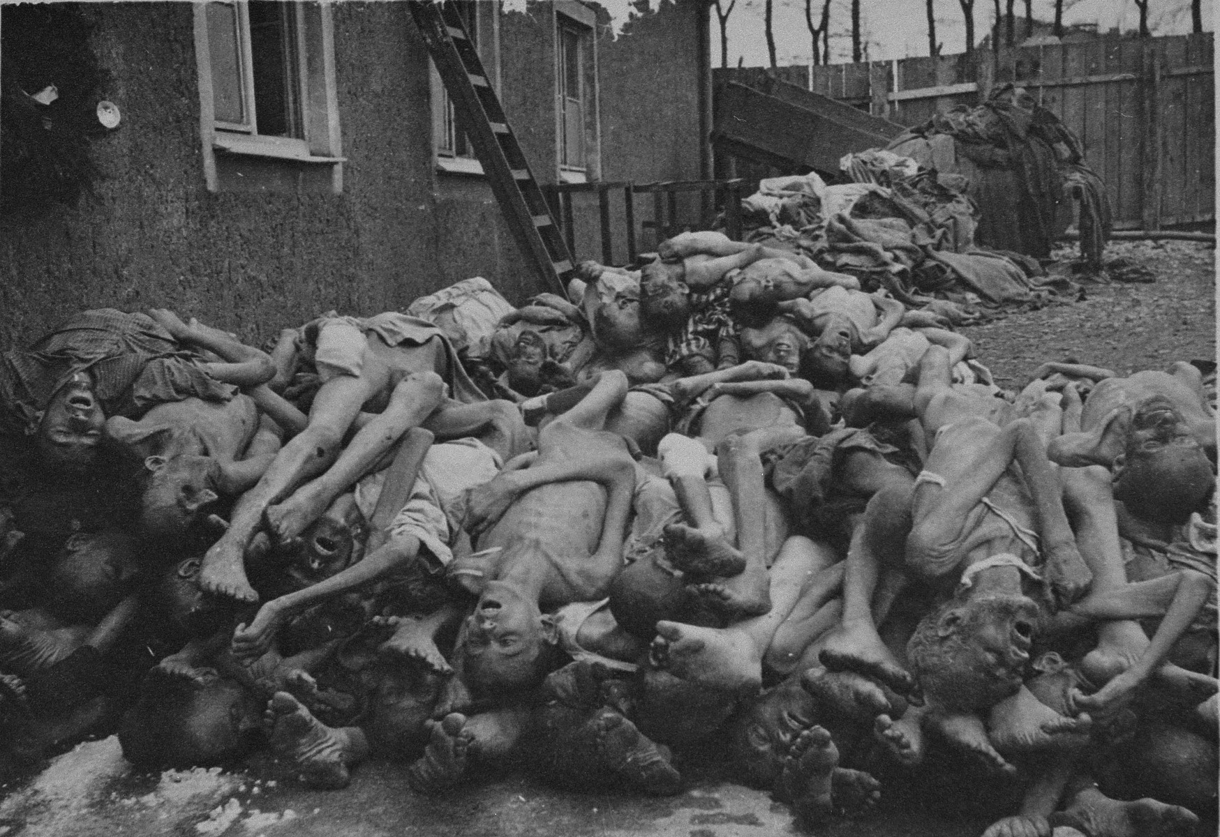 Corpses piled up behind the crematorium in Buchenwald concentration camp.