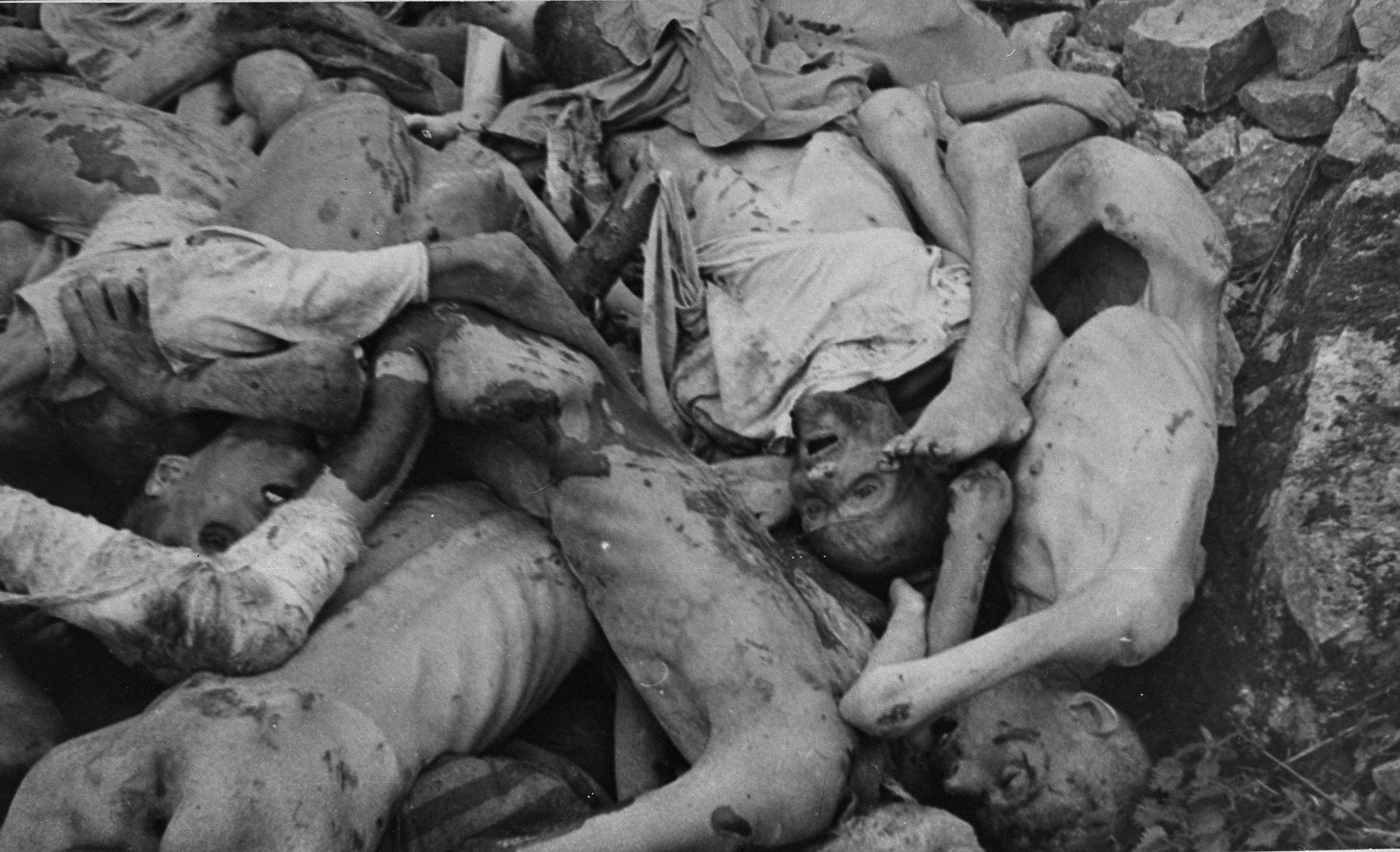 The corpses of prisoners killed in Buchenwald.