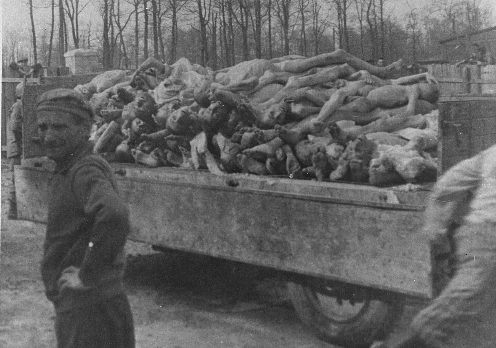 A wagon is piled high with the bodies of former inmates at the newly liberated Buchenwald concentration camp.