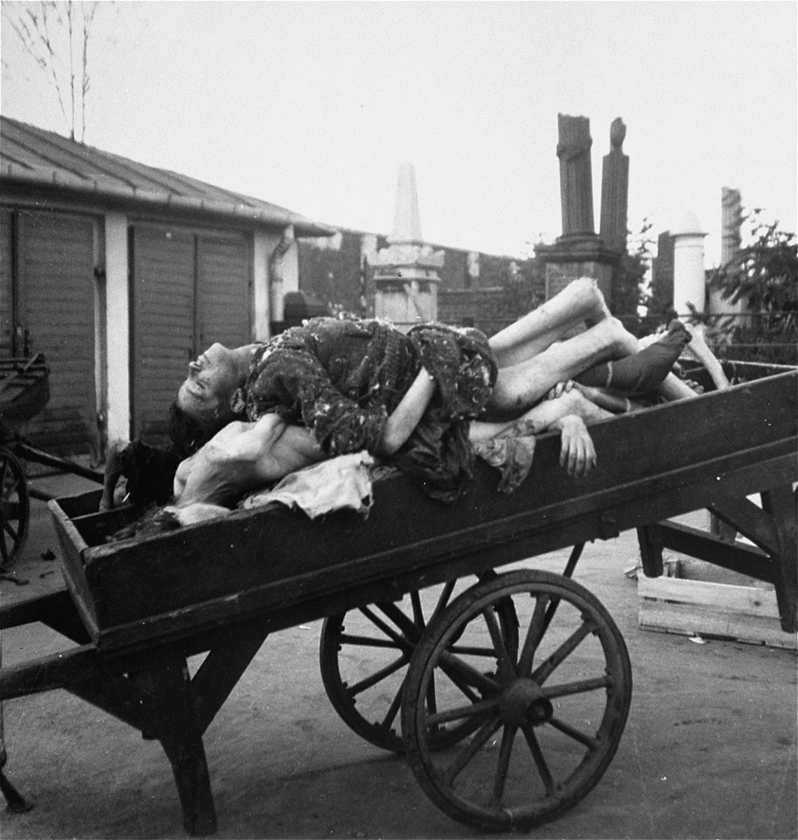 "Bodies piled on a cart await burial in the Jewish cemetery on Okopowa Street in the Warsaw ghetto.  Joest's caption reads: ""In addition to me there were other German soldiers who photographed these carts.  'It is an attraction,' one man said to me.  [Can you imagine] if they sent these photos home?"""