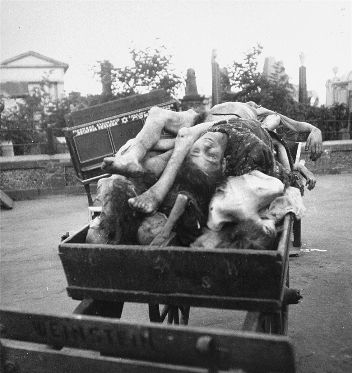 "Bodies piled on a cart await burial in the Jewish cemetery on Okopowa Street in the Warsaw ghetto.   Joest's caption reads: ""Many corpses were transported to the cemetery in closed wagons.  I saw others arrive piled on top of one another in open carts."""
