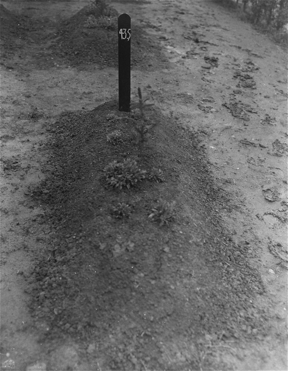 View of one of the mass graves at the Hadamar Institute.  The photograph was taken by an American military photographer soon after the liberation.