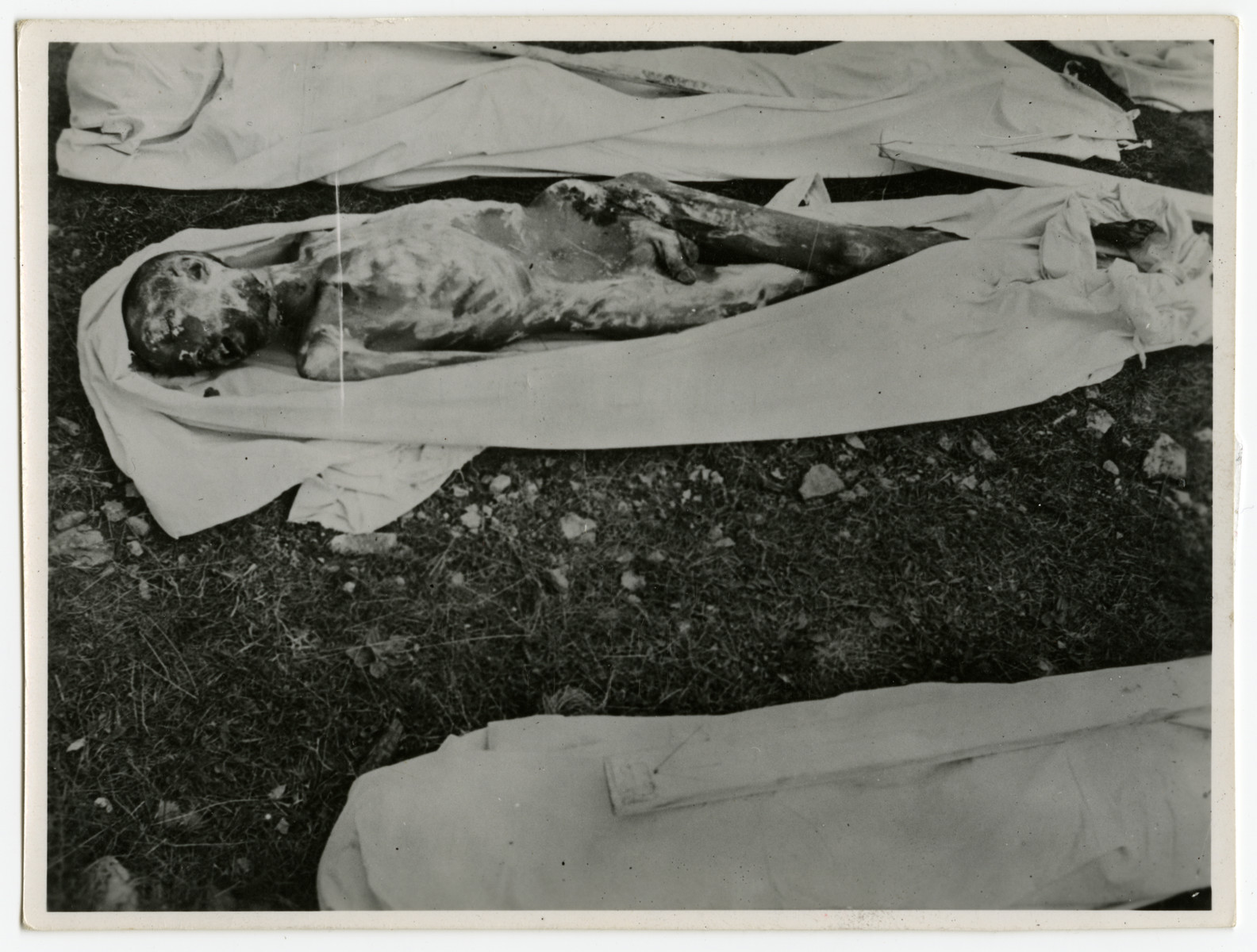 "The decomposed corpse of a prisoner that has been prerpared for burial by local German civilians.  Each corpse was buried in a sheet and assigned a numbered marker.   The original caption reads, ""Bodies prepared for burial by the civilians of Ohrdruf Germany. Some have probably been dead for several weeks. Ohrdruf concentration camp, Germany."" [sic]"