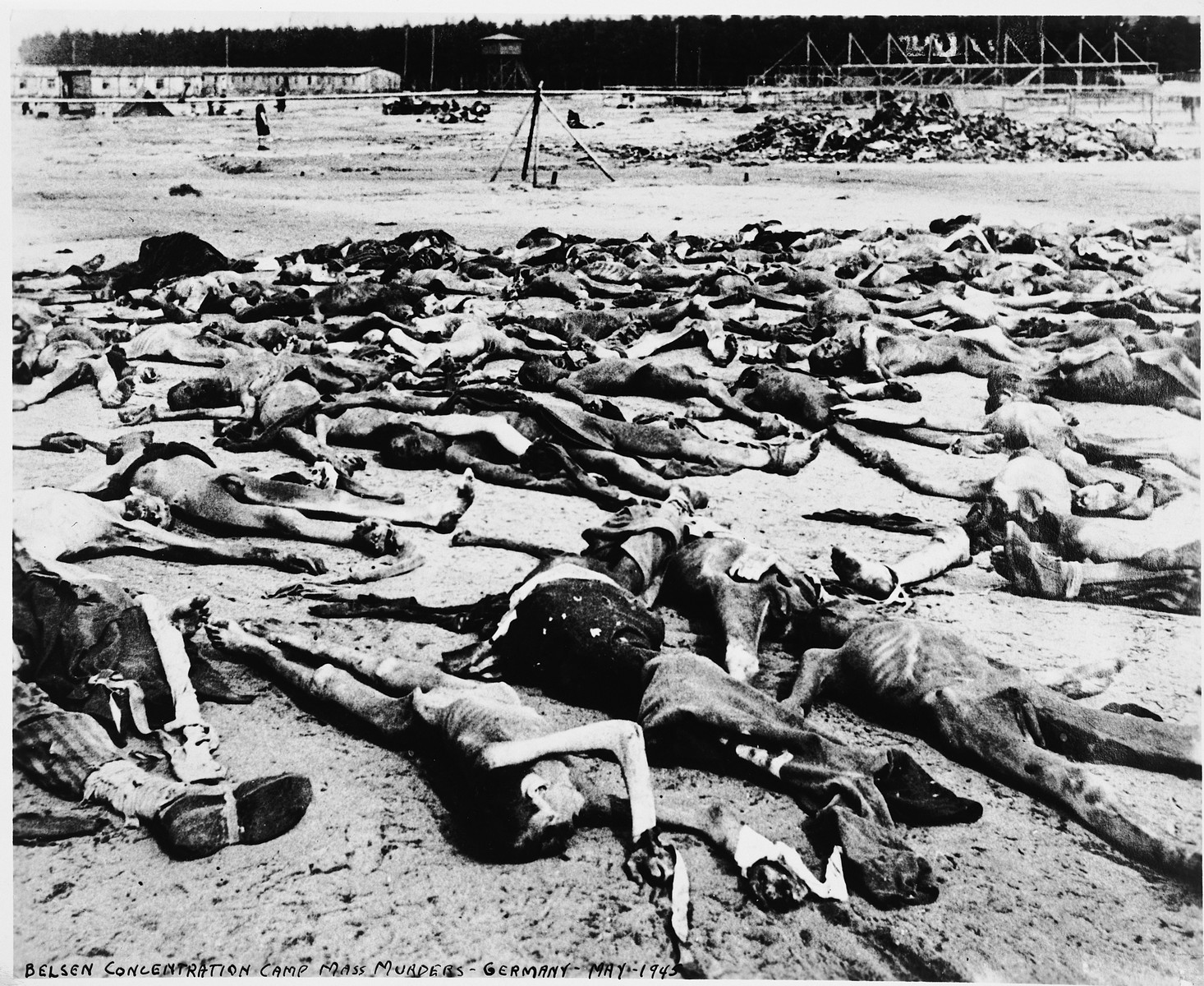 Decomposing corpses strew the grounds of the Bergen-Belsen concentration camp.