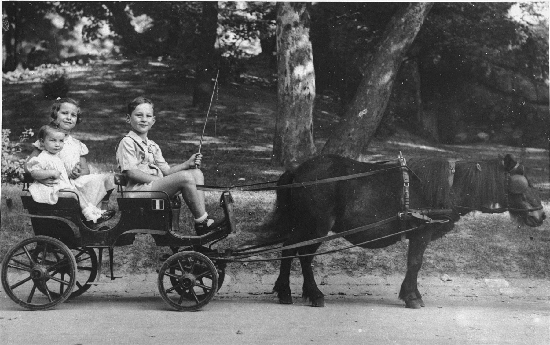 Three Jewish children ride in a miniature horse-drawn carriage in a city park in Budapest.  Pictured are seven-year-old Gyorgy Pick, who is driving his two cousins, Agnes Szalai (age seven) and Susan Lederer (age one).