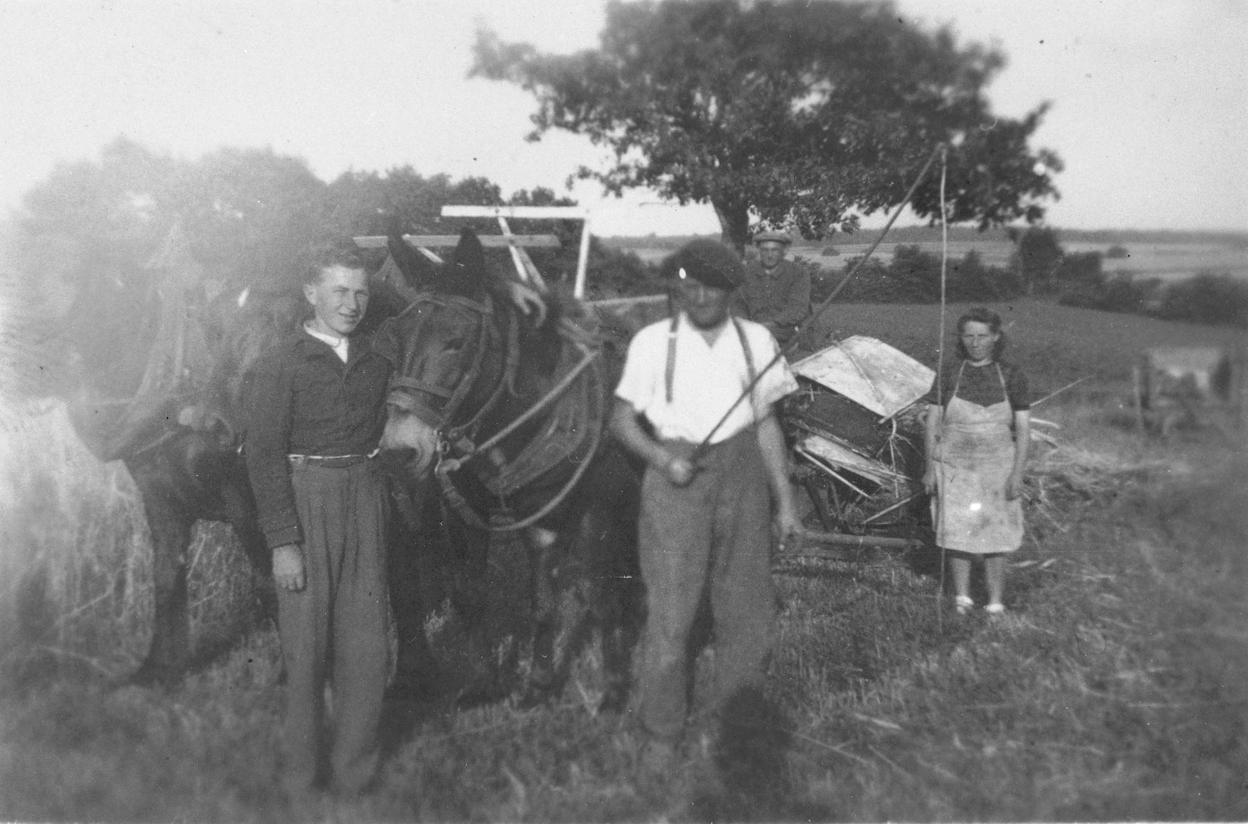 Bernard Ginsburg (left), a Jewish teenager in hiding, assists Adrian and Marie Puyrajoux on their farm in France.