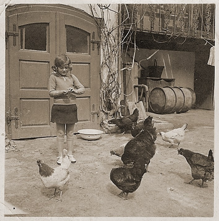 Ruth Wottitzky feeds the chickens outside her home in Windigsteig, Austria.