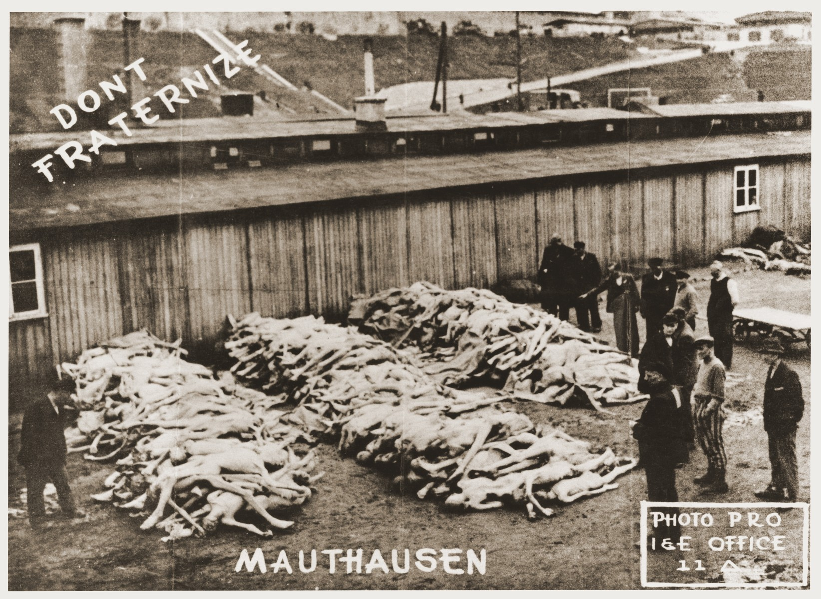 Handbill issued by the U.S. Army which uses an image of concentration camp victims at Mauthausen to remind soldiers not to fraternize with German civilians.    The donor, Donald Schaufelberger, received this handbill while serving with the 11th Armored Division of the U.S. Third Army.