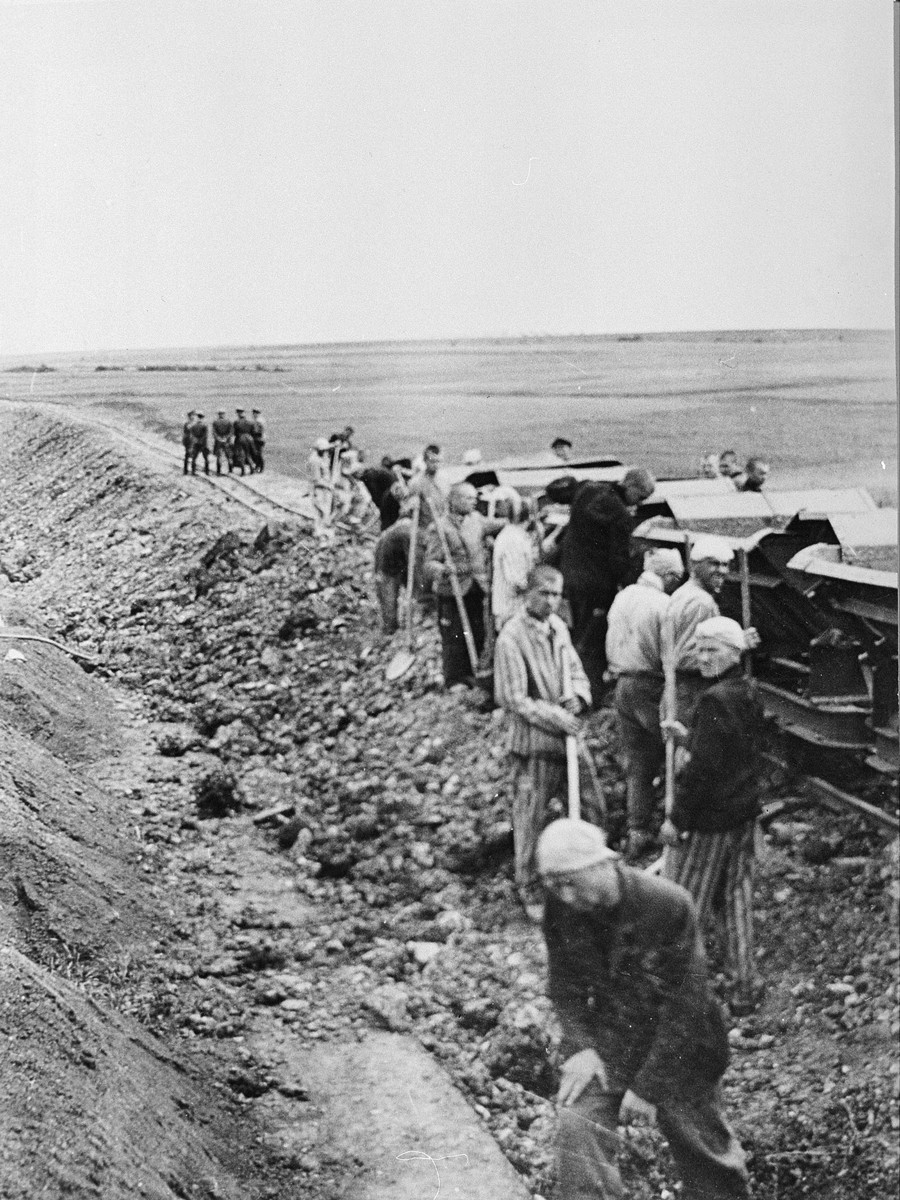 Prisoners from the Buchenwald concentration camp at forced labor building the Weimar-Buchenwald railroad line.