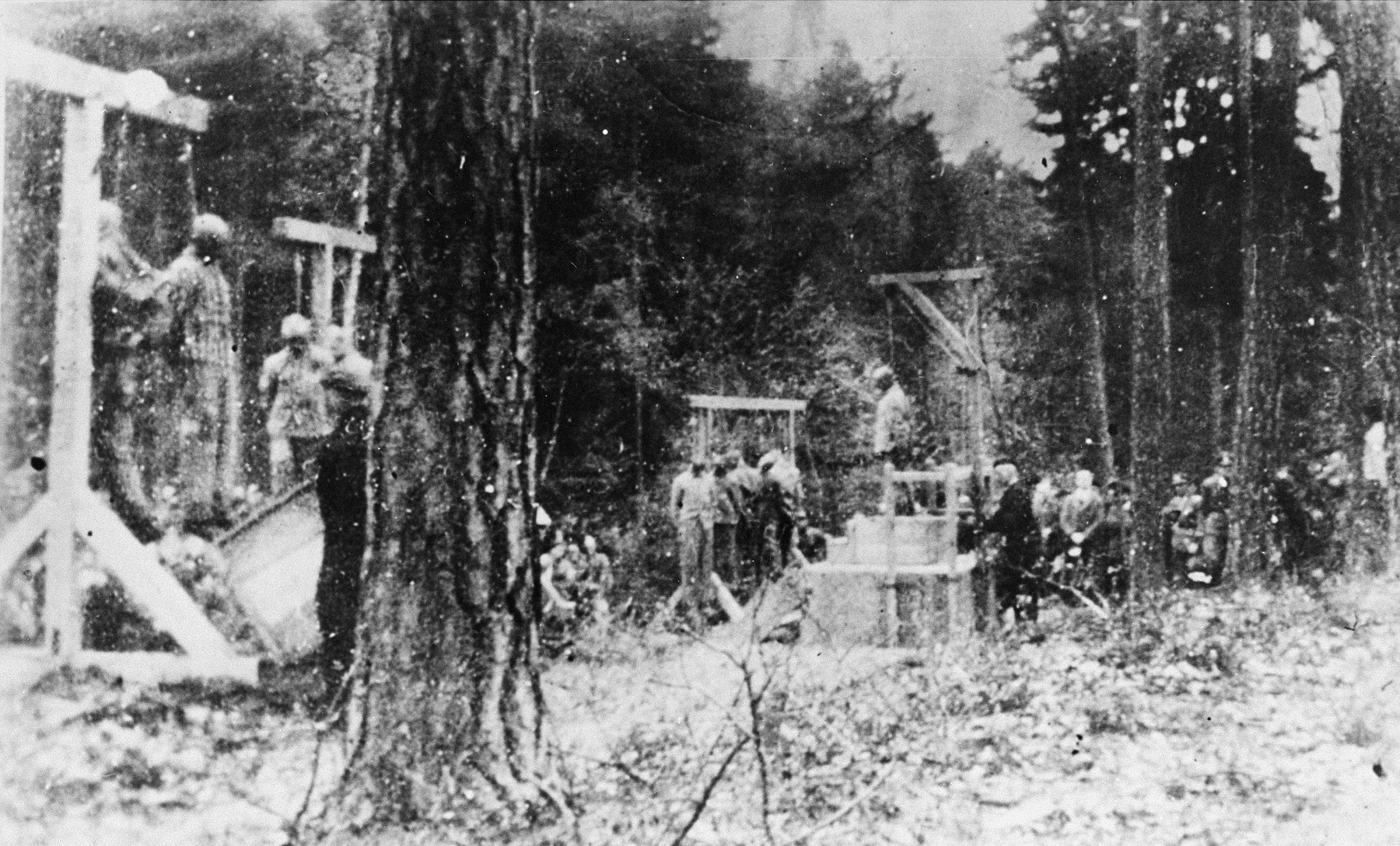 The execution of twenty prisoners from Buchenwald, most of them Jews, in the forest near the camp.   The prisoners were hanged in retaliation for the murder of a German guard or policeman, and the entire camp was forced to view the hanging corpses.
