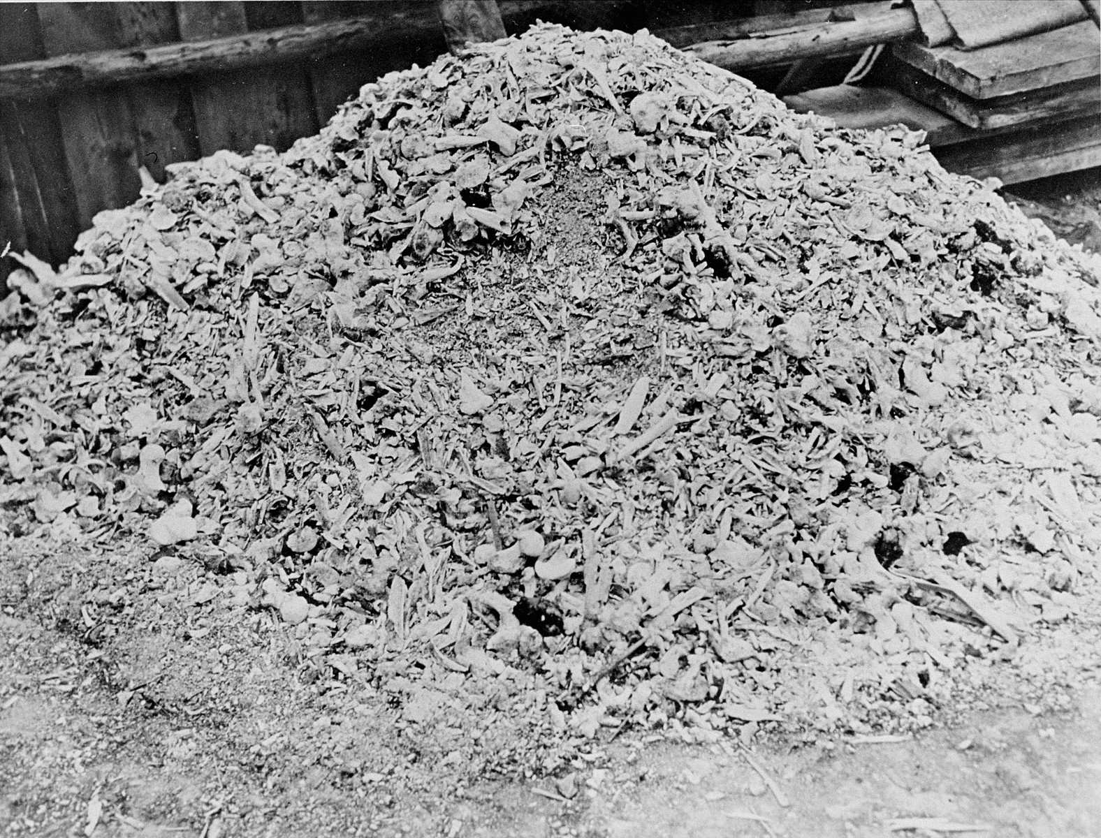 A heap of ashes and bones shoveled out of the crematoria ovens in Buchenwald concentration camp.
