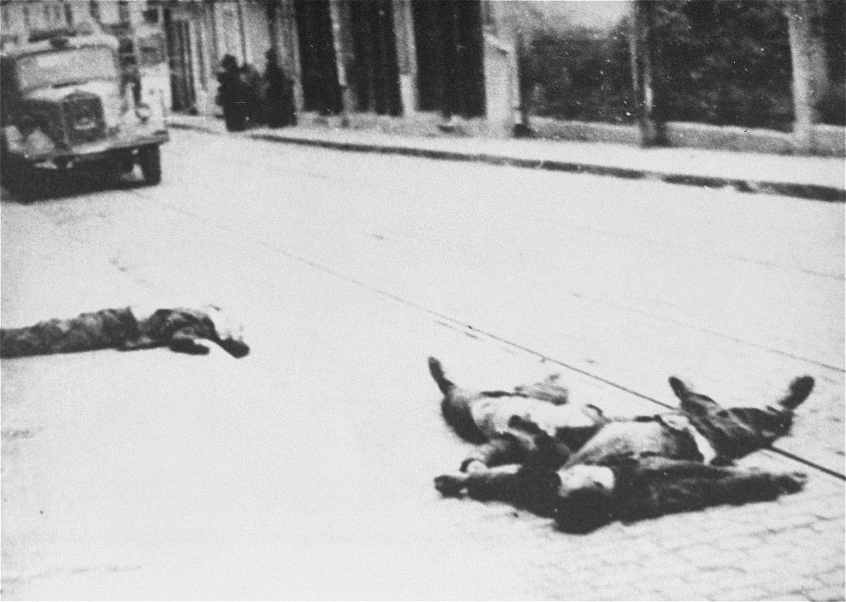 The bodies of Jews killed on Cuza Voda Street during the Iasi pogrom lie in the street.