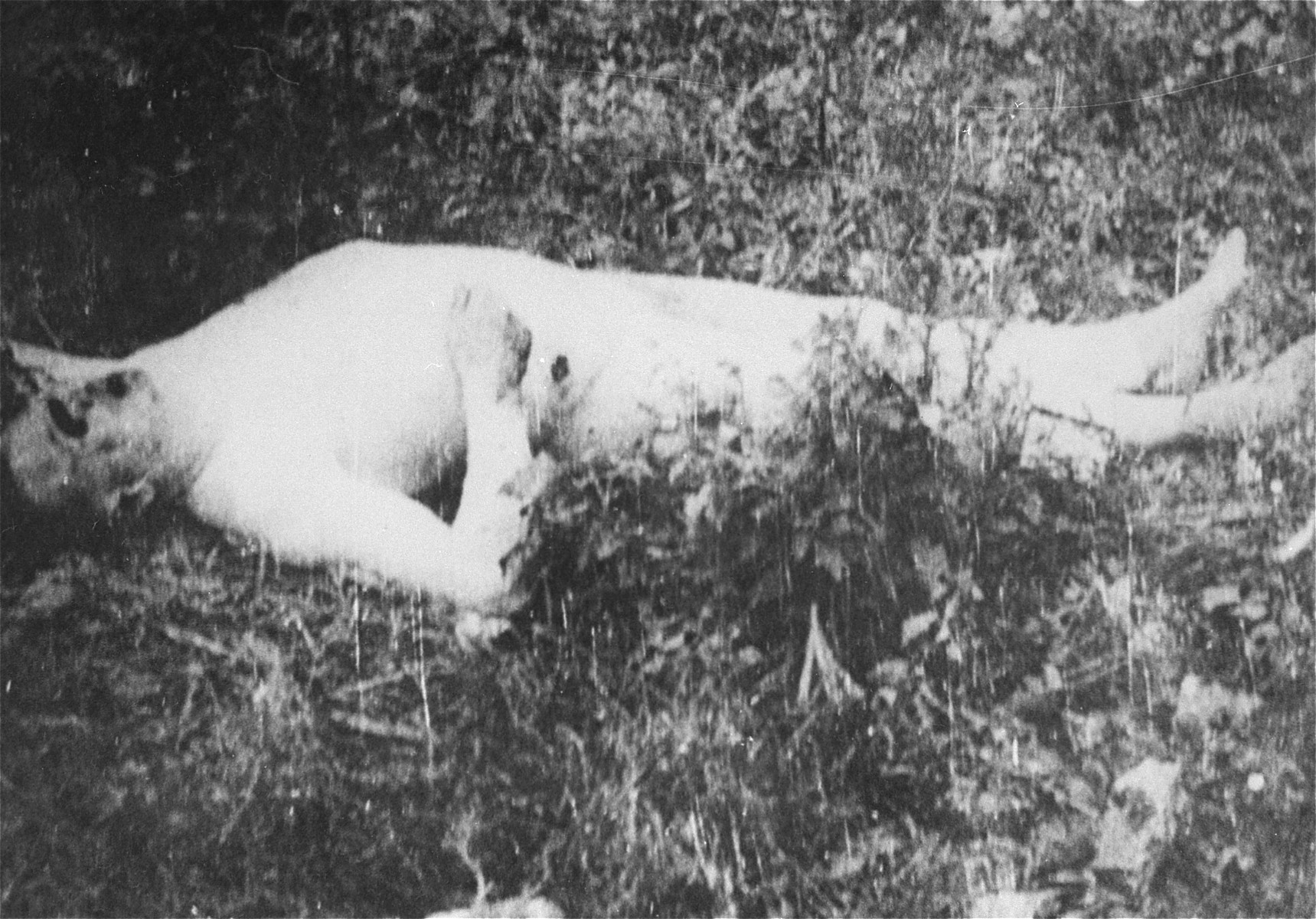 The body of a Romanian Jew who died on one of two death trains that left Iasi on June 30, 1941.  The first train was bound for Calarasi and the second for Podul Iloaiei.