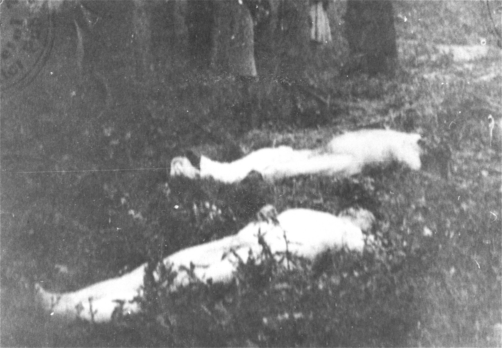 The bodies of Romanian Jews who died on one of two death trains that left Iasi on June 30, 1941.  The first train was bound for Calarasi and the second for Podul Iloaiei.