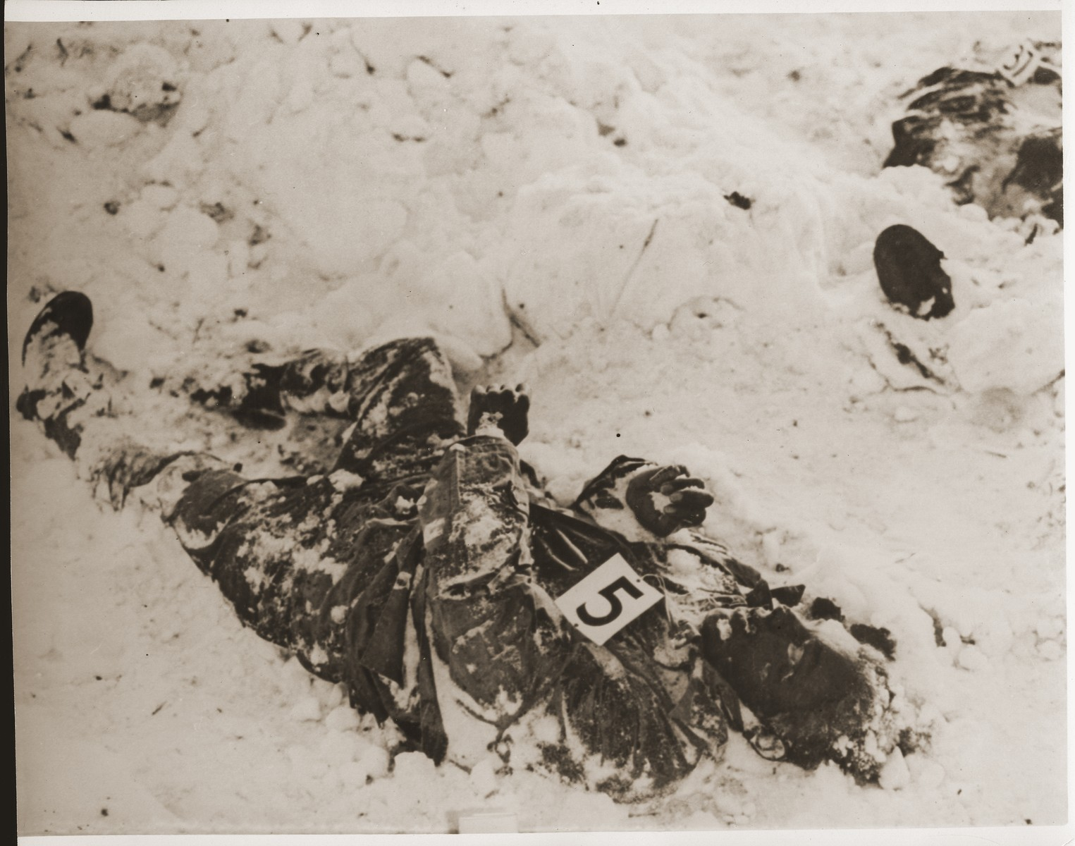 """The corpse of an American soldier killed by the SS in the Malmedy atrocity.  The caption on the back of the photograph reads, """"ETO HG 45, MASTER CAPTION.  Atrocities committed by German troops in the vicinity of Five Points, near Malmedy, Belgium, on or about 17 December, 1944.  Photograph made after recapture of ground and exhumation of bodies."""""""