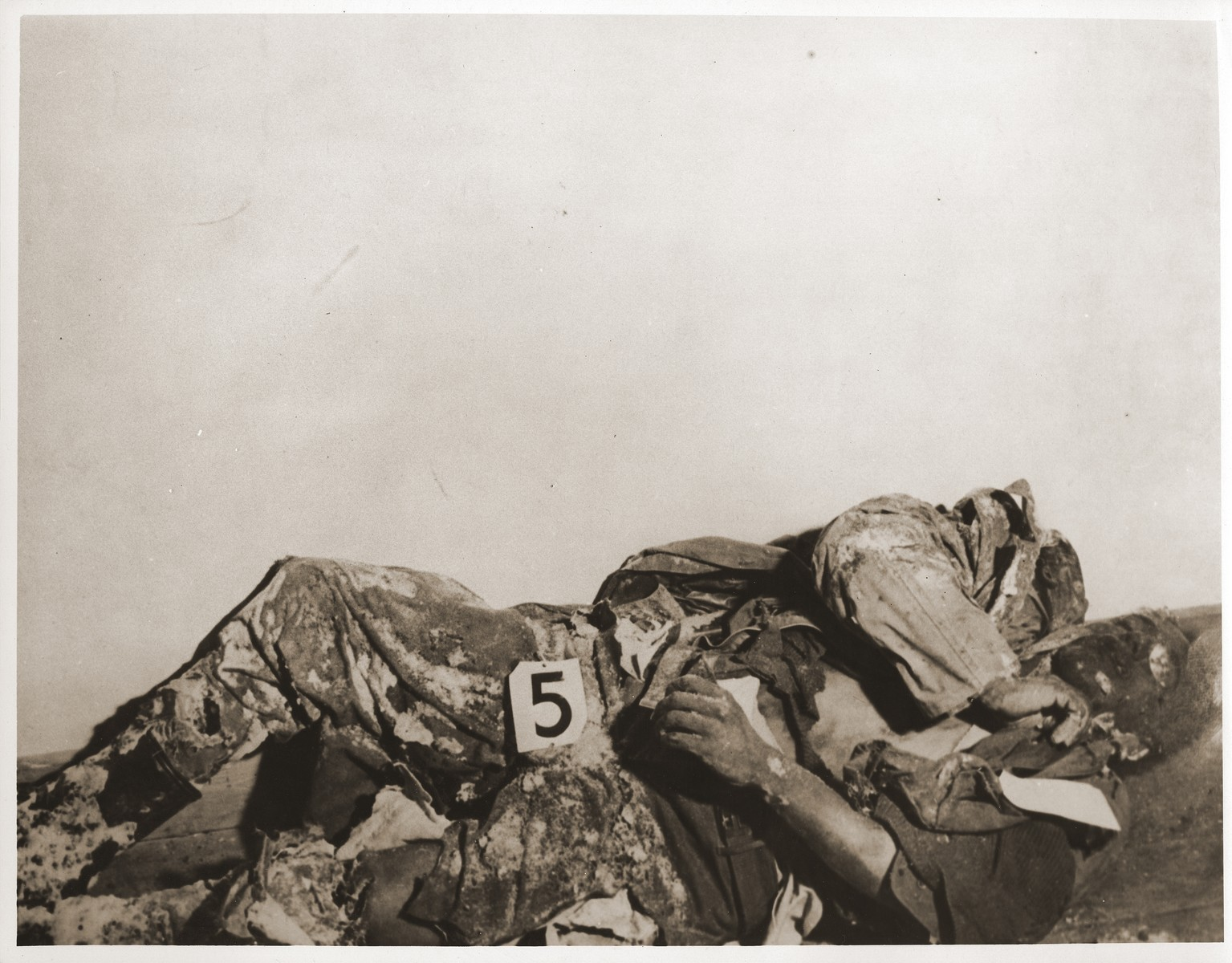 "The corpse of an American soldier killed by the SS in the Malmedy atrocity.  The caption on the back of the photograph reads, ""ETO HQ 45, MASTER CAPTION.  Atrocities committed by German troops in the vicinity of Five Points, near Malmedy, Belgium, on or about 17 December, 1944.  Photograph made after recapture of ground and exhumation of bodies."""
