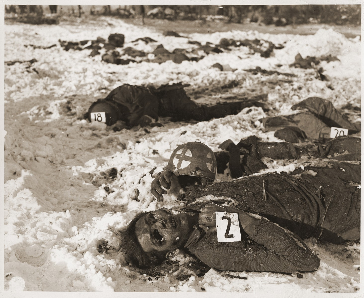 The bodies of American soldiers killed by the SS in the Malmedy atrocity.