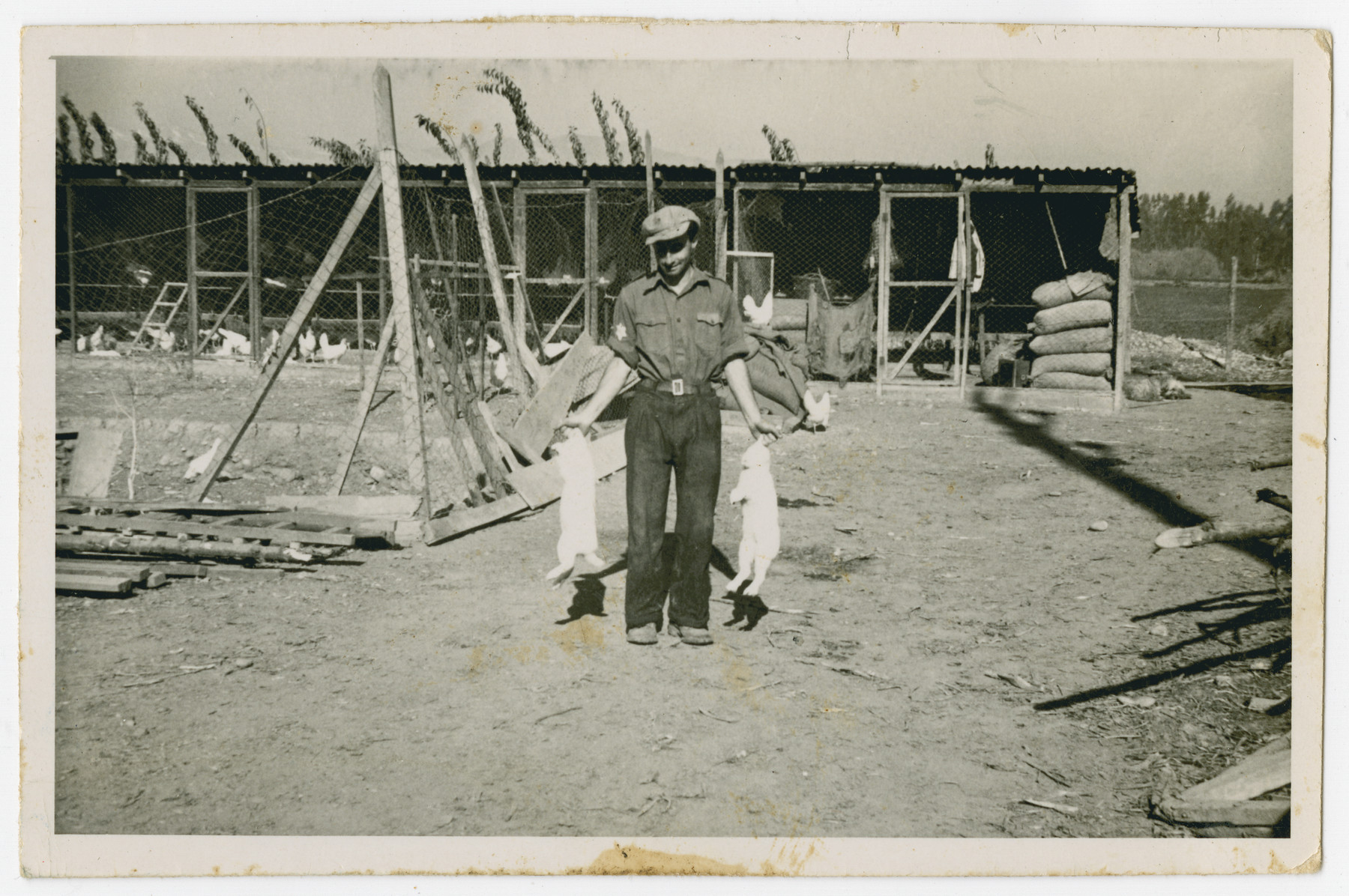 "Photograph from an album entitled, ""Hacshara Kidma Chile,""  documenting life on a postwar Shomer Hatzair Zionist agricultural collective in Chile.  A young man carries two rabbits by the ears.  The inscription on the back (in German) reads, ""Two rabbits and me.""  The inscription on the album page reads, ""La Monja."""