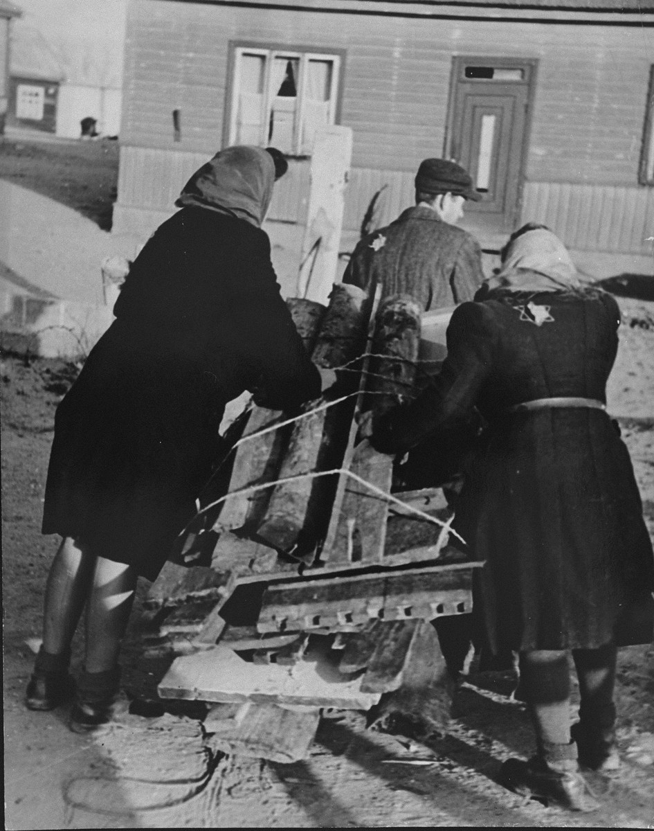 Jews transport their wood rations to their homes in the Kovno ghetto.