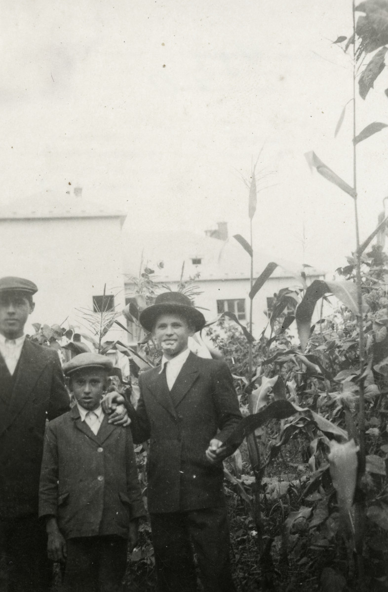 David, Bezalel and Zvi Schaechter stand in the garden of their home in Tacovo.
