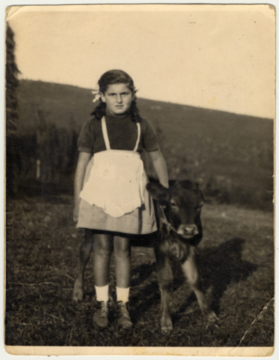 Rina Willer stands next to a young calf while in hiding in the Croatian countryside after escaping from the Rab internment camp.